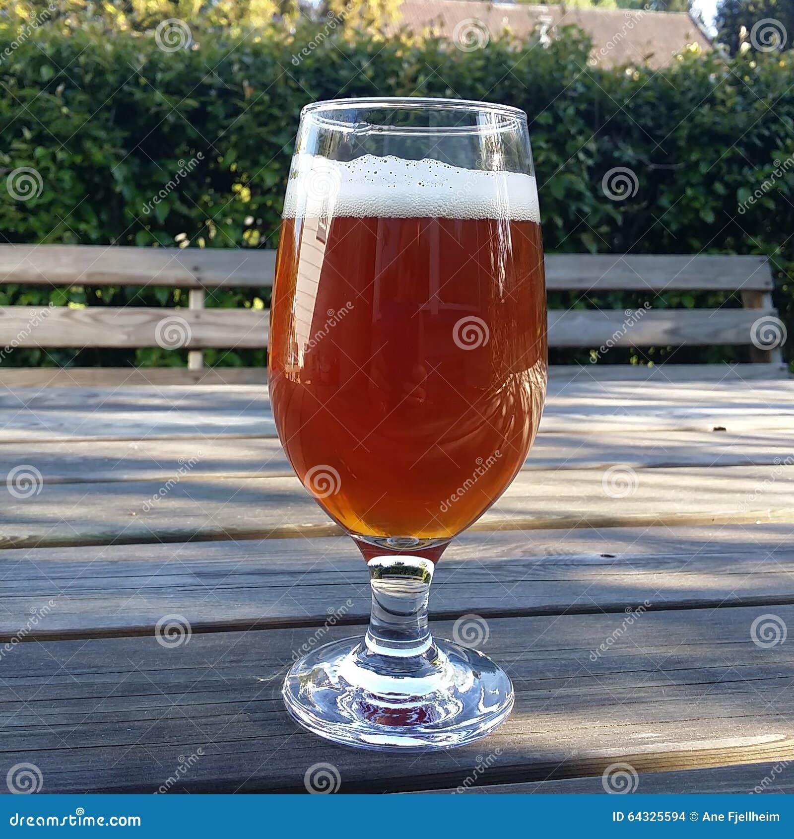 Beer In The Sun Stock Photo Image Of Summer Garden 64325594