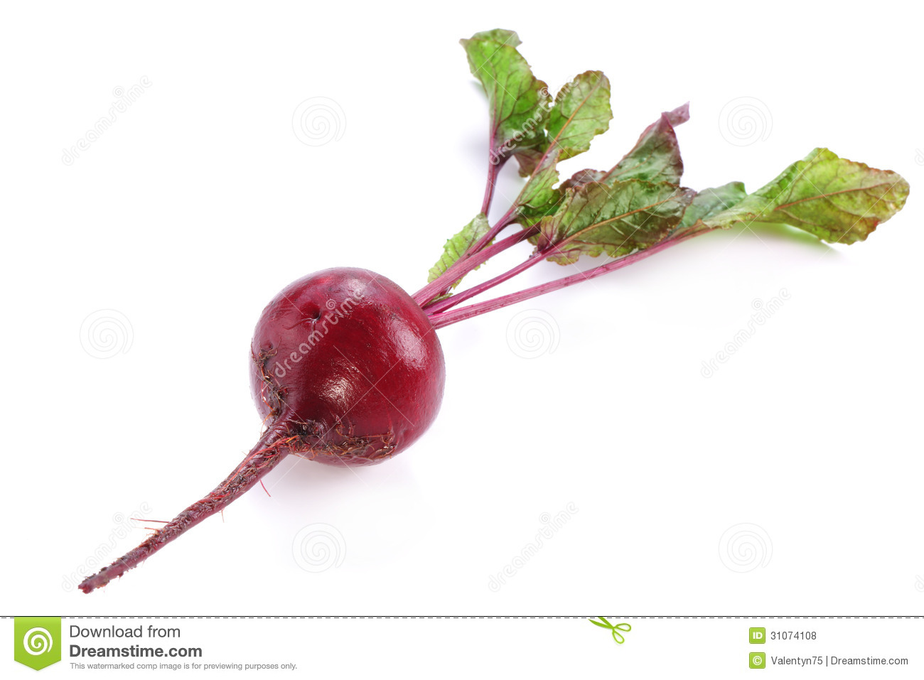 Beet Roots. Royalty Free Stock Photos - Image: 31074108