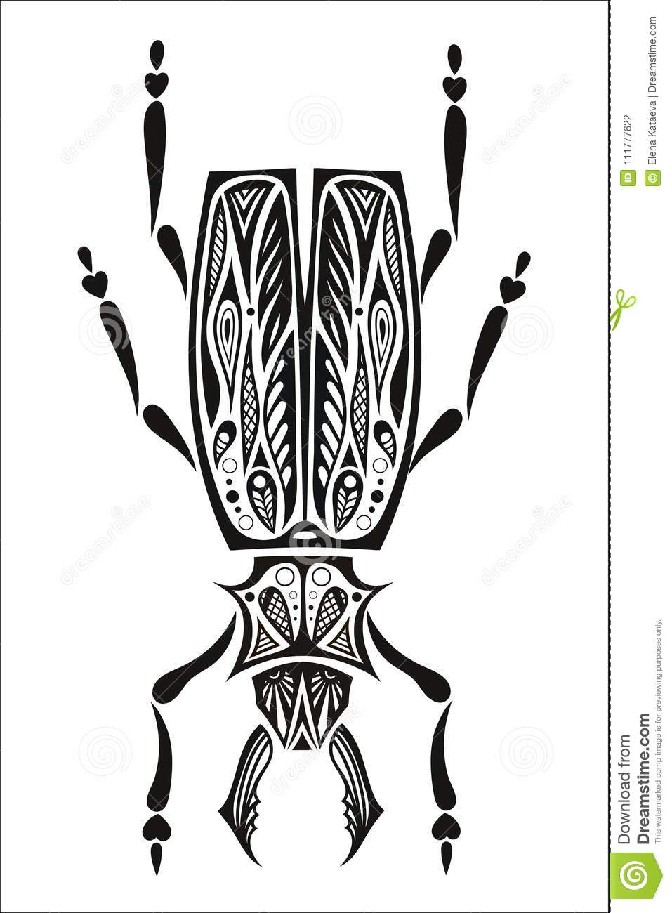 Beetle bug insect isolated on white background vecto