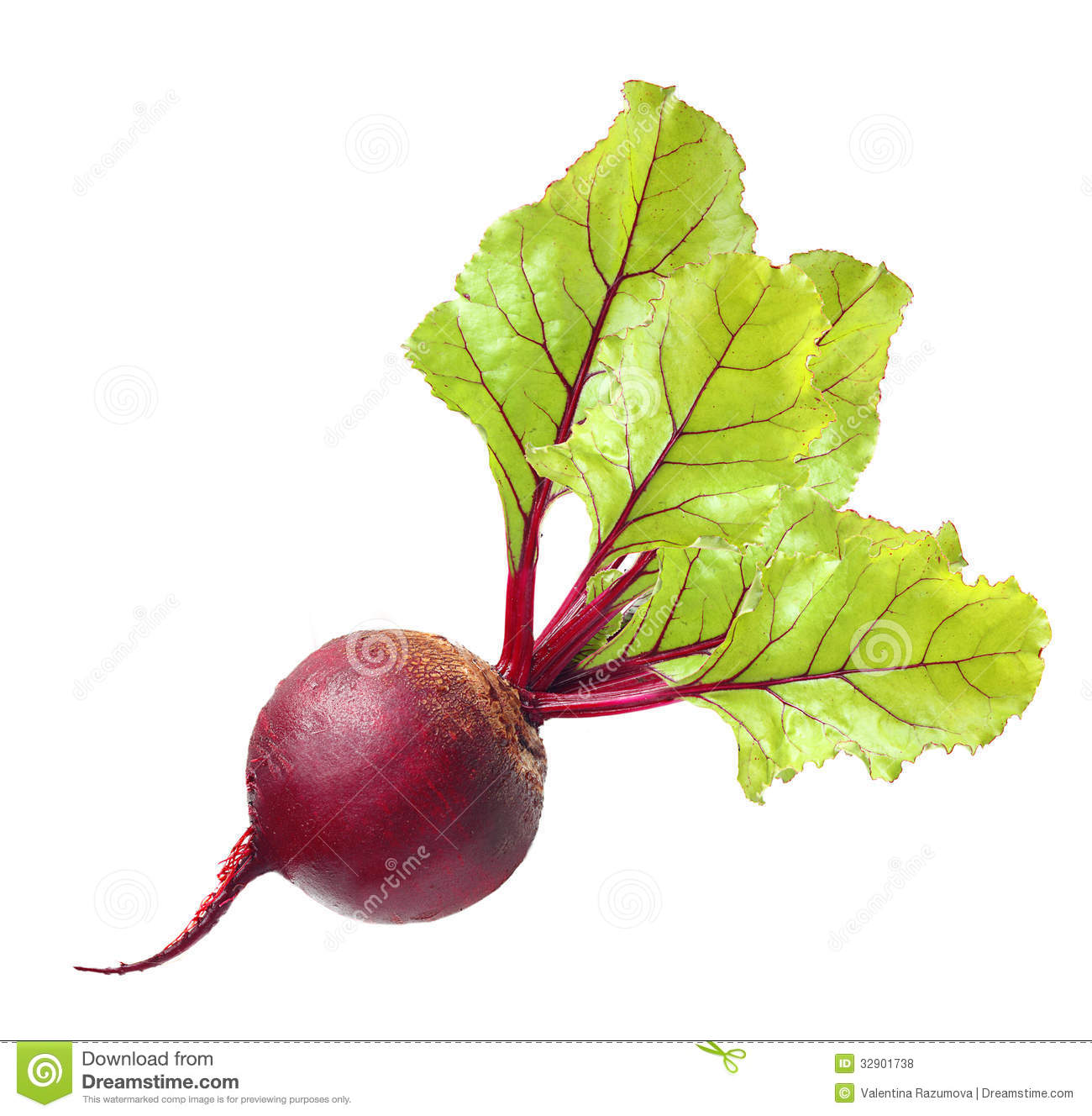 Beetroot With Leaves Royalty Free Stock Photos - Image: 32901738