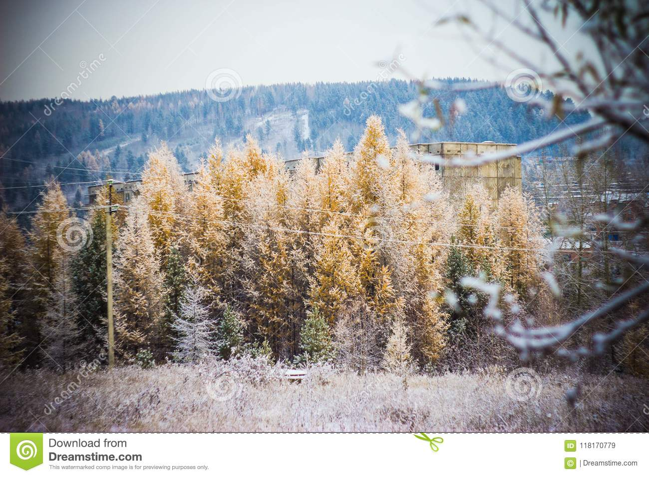 What will be the winter in Siberia in 2017-2018 77