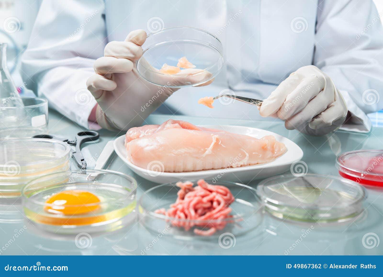 Begrepp för matsäkerhet