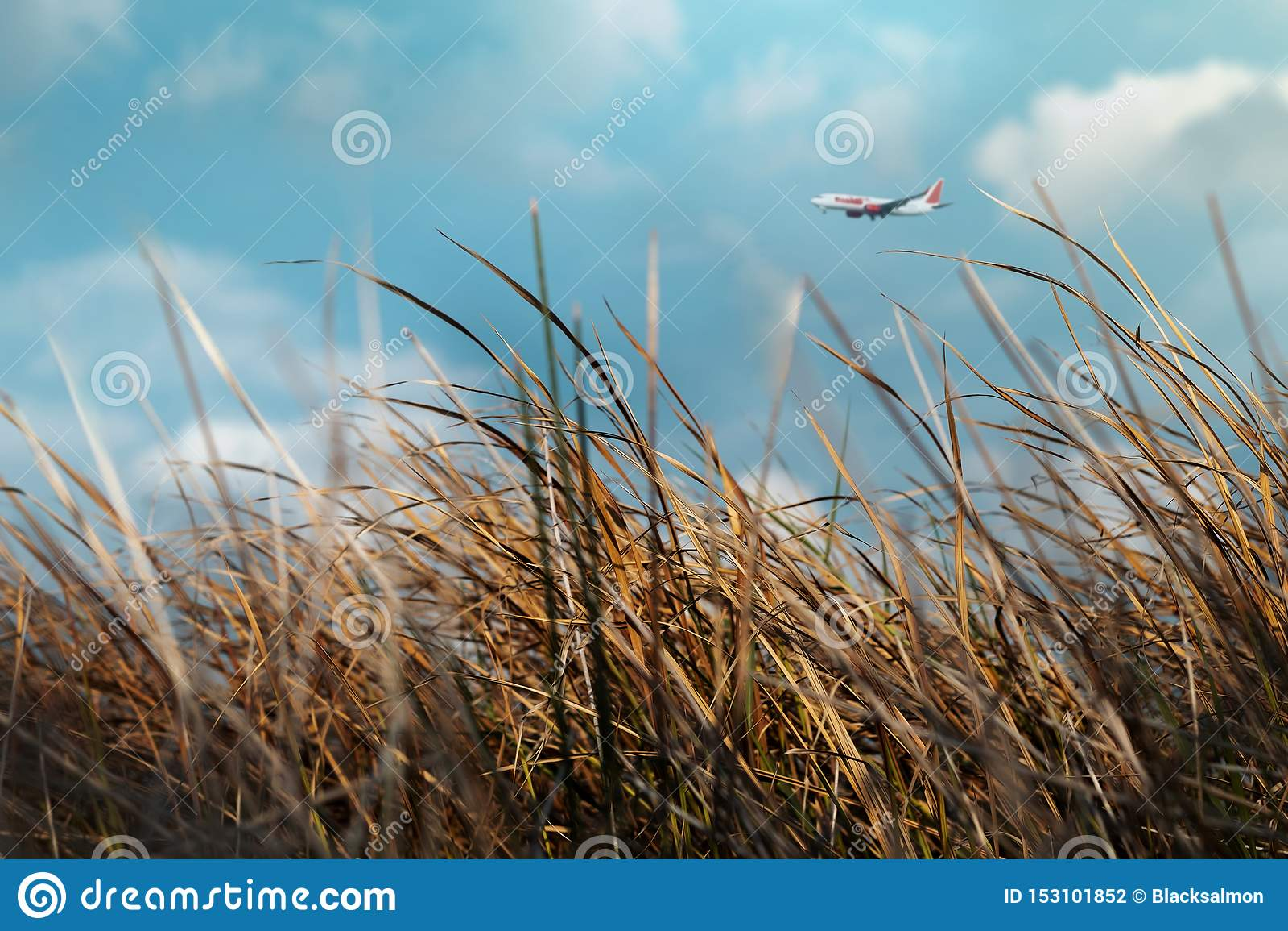 Begrepp isolerad trans Suddigt flygplanflyg i den molniga blåa himlen på Sunny Day