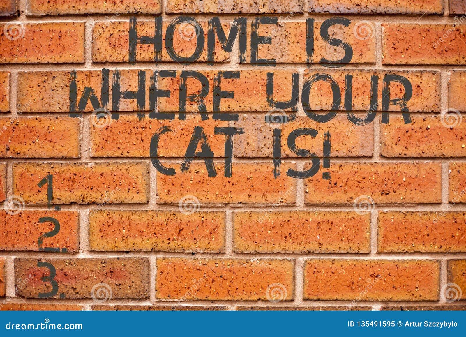 Begreppsmässig handhandstil som hem visar, är var din Cat Is Affärsfoto som ställer ut katt- skydd för kattungevänner