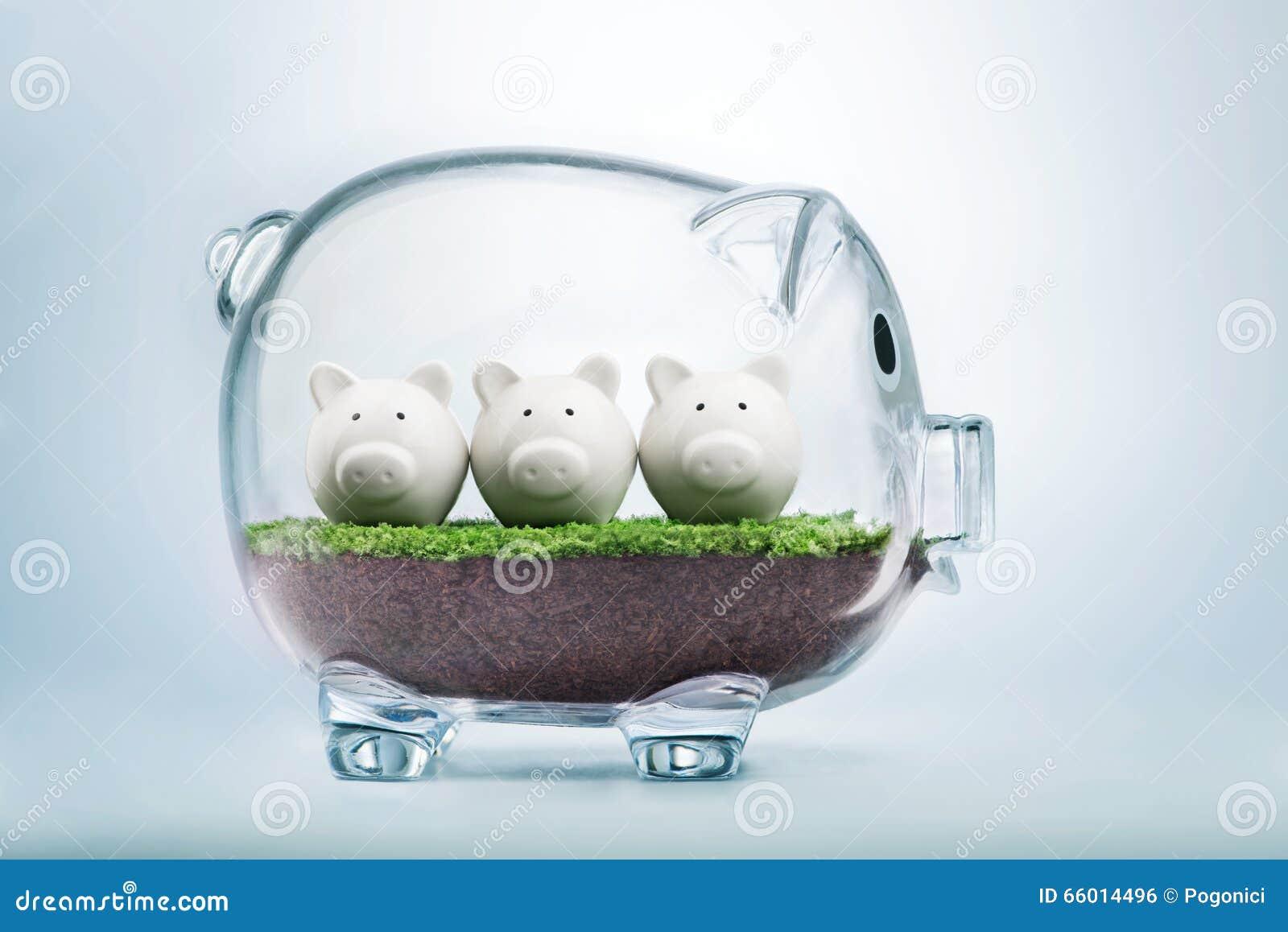 Begroting die en geldconcept plannen toewijzen
