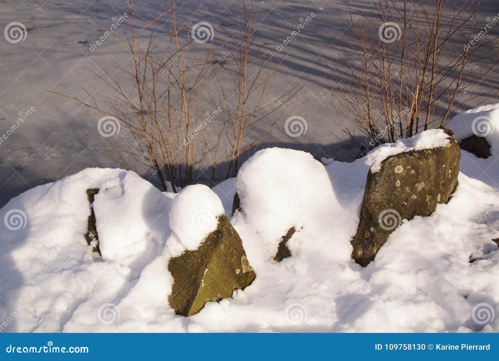 Behandeld in vorst Gekke meer en sneeuw - Bassin DE La muette in Frankrijk