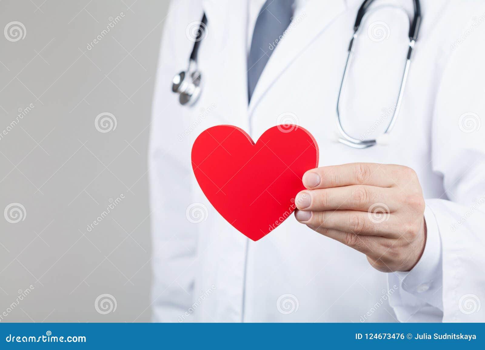 Behandeln Sie den Kardiologen, der ein Herz in seinen Händen hält Kardiologie- und Herzkrankheitskonzept