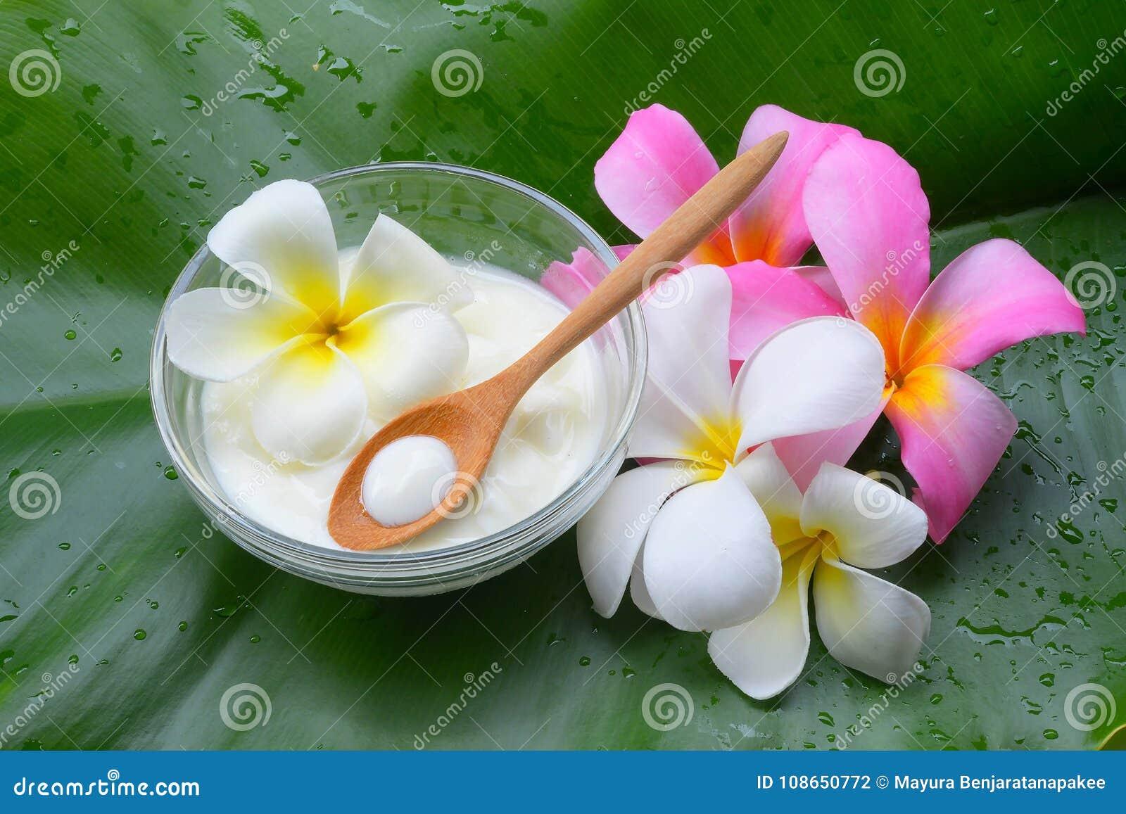 Behandlingar för brunnsort för yoghurt för framsidamaskering naturliga för hud