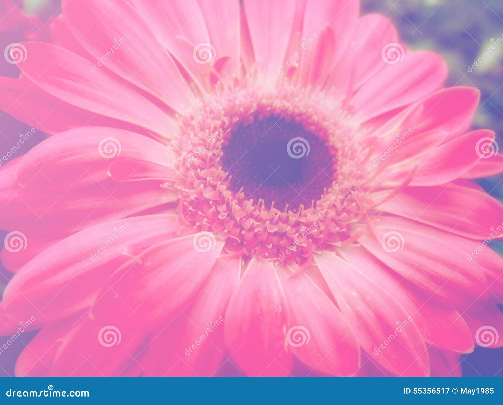 Bei fiori fatti con il fondo dei filtri colorati