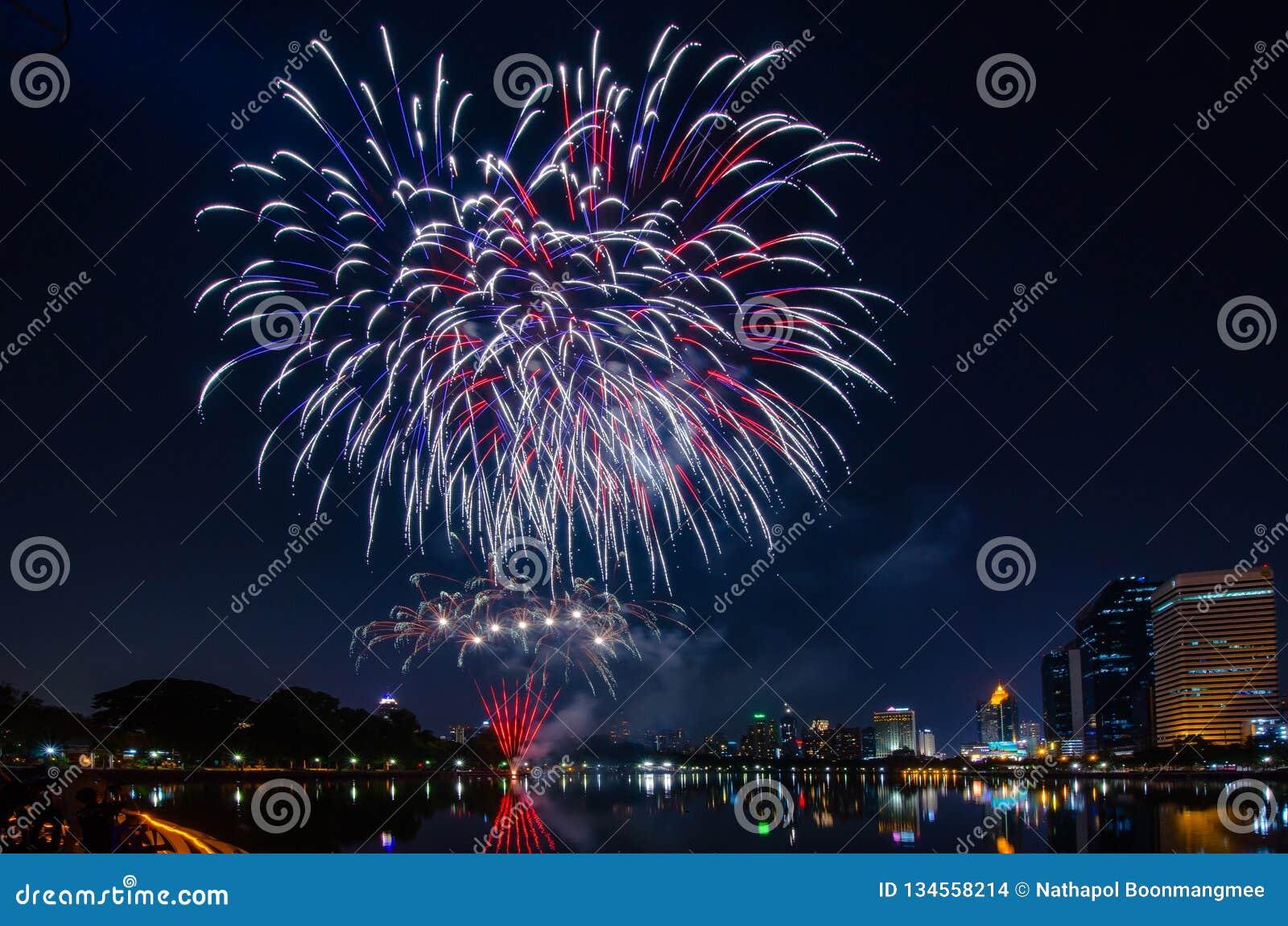 Bei fuochi d artificio variopinti di festa sui precedenti neri del cielo