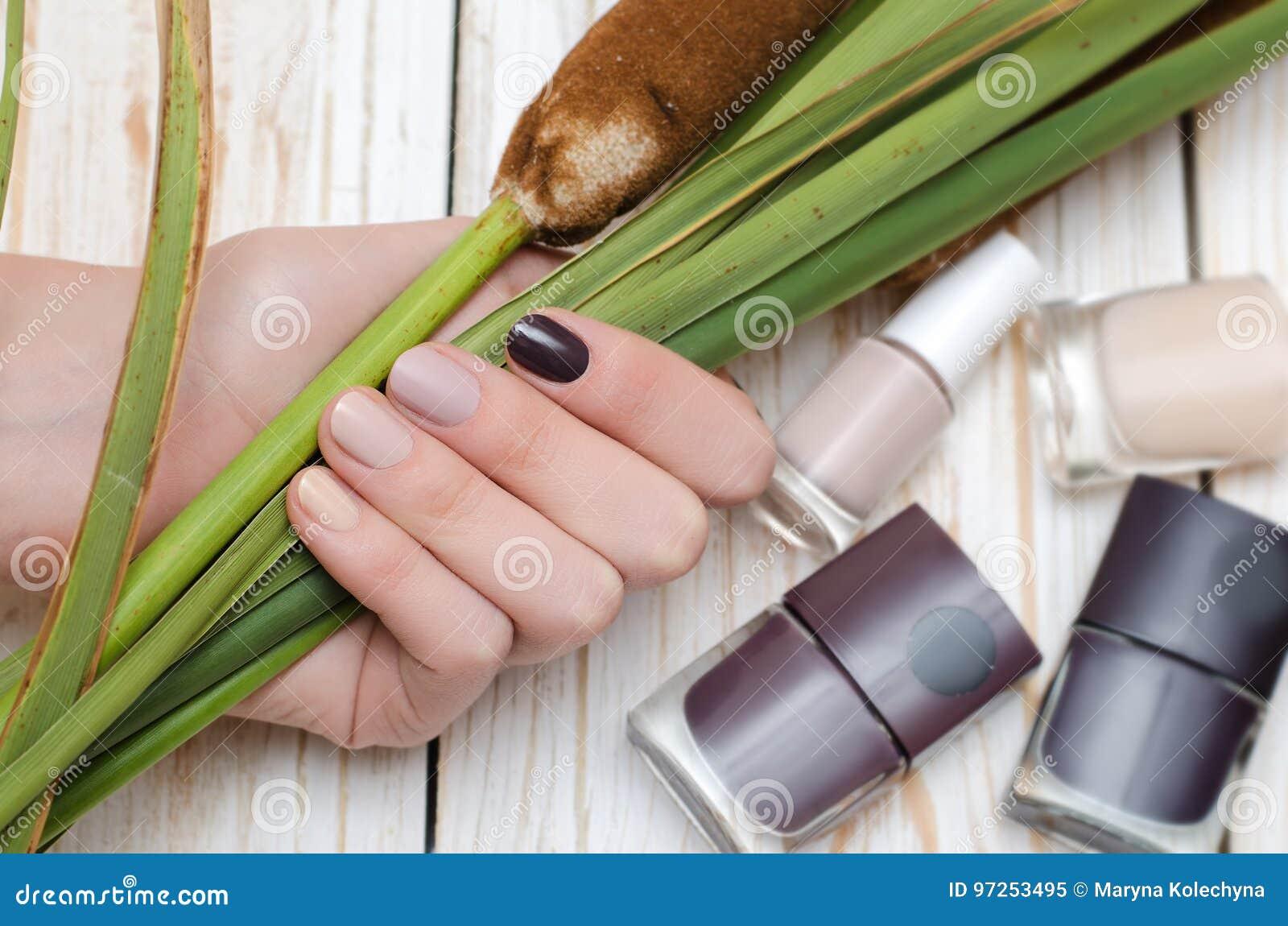 Genial Nageldesign Braun Beige Das Beste Von Pattern Schöne Weibliche Hand Mit Unterschiedlicher Brauntönemaniküre