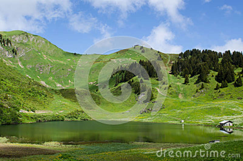 Download Beige Painted House Beside Body Of Water Stock Photo - Image of mountain, trees: 84996228