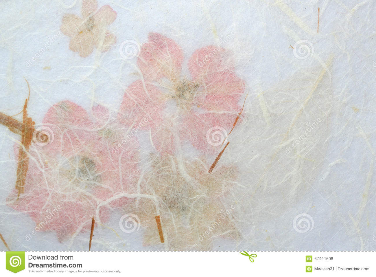 Beige And Pink Floral Background Stock Photo Image Of Natural