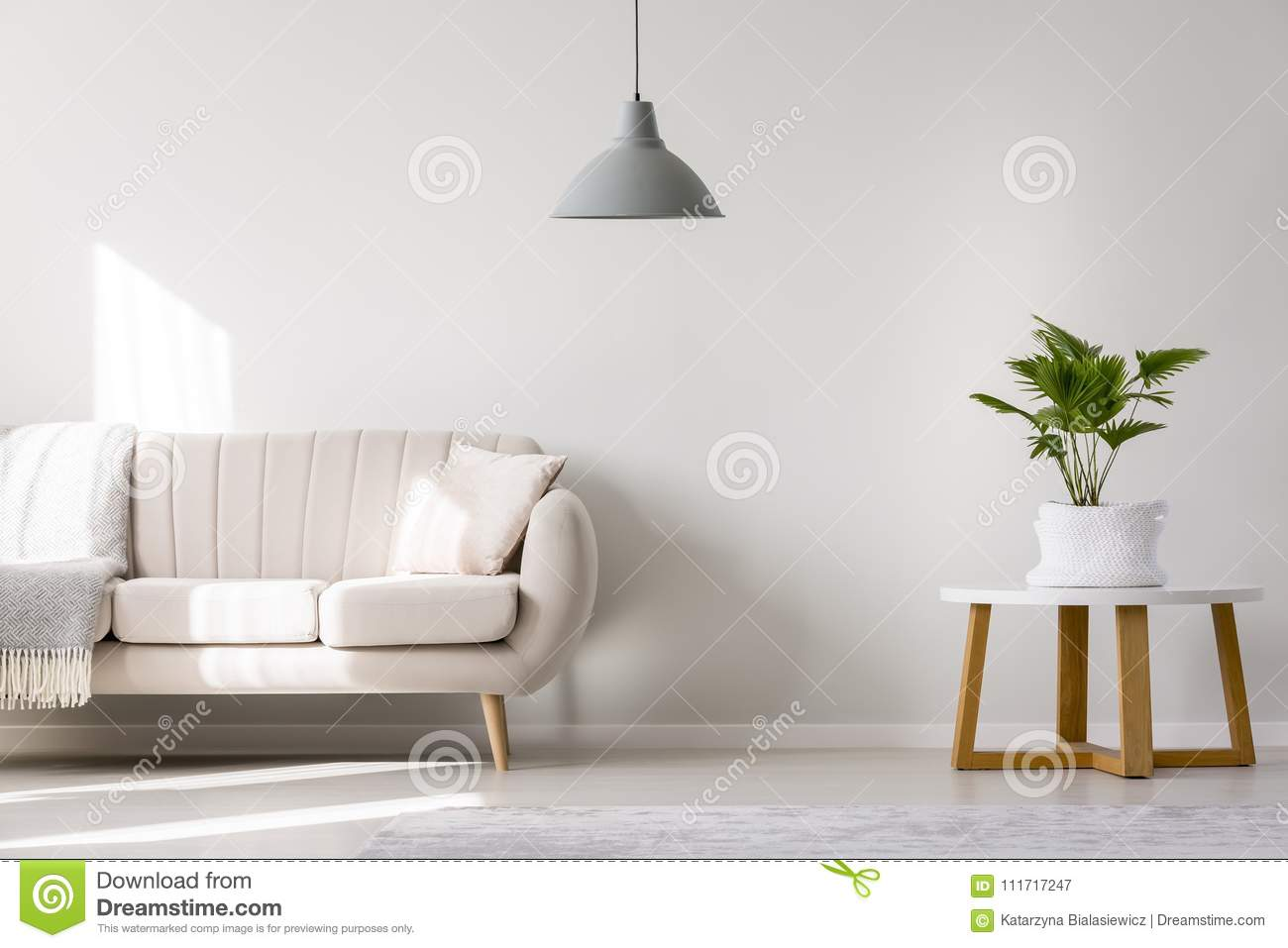 Gray Lamp In Living Room Stock Image Image Of Palm