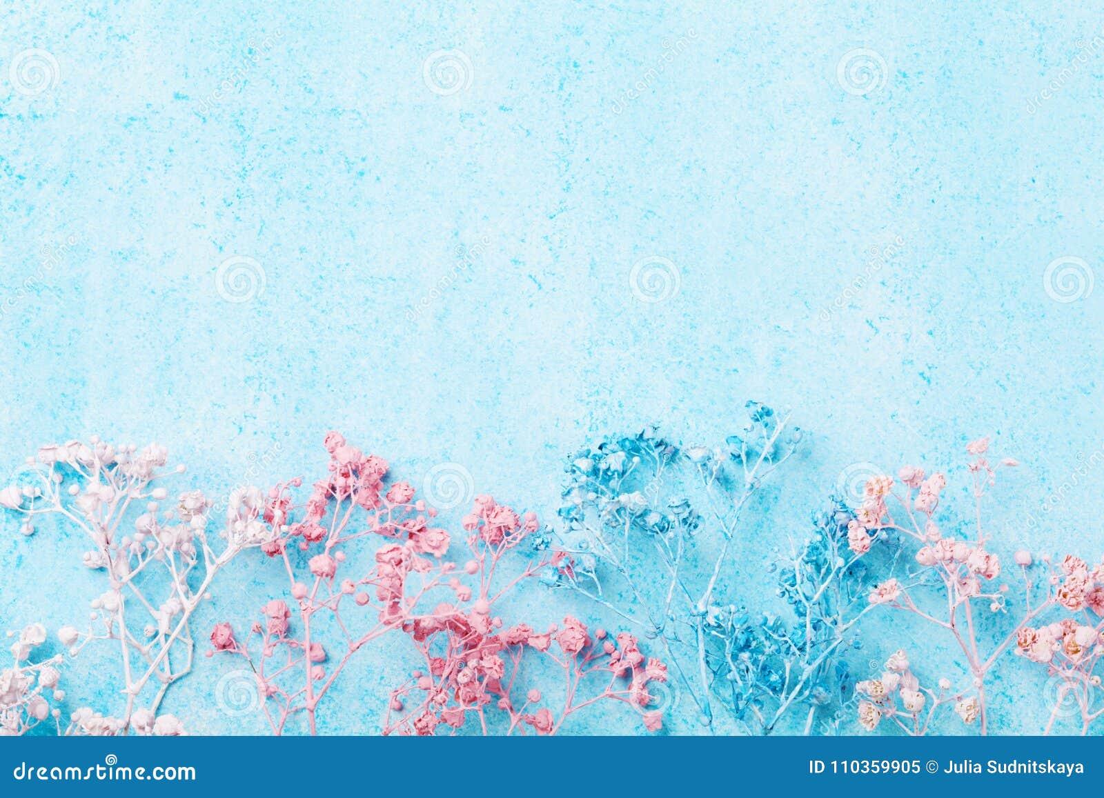Beira da flor do casamento na opinião superior do fundo pastel azul Teste padrão floral bonito estilo liso da configuração Mulher