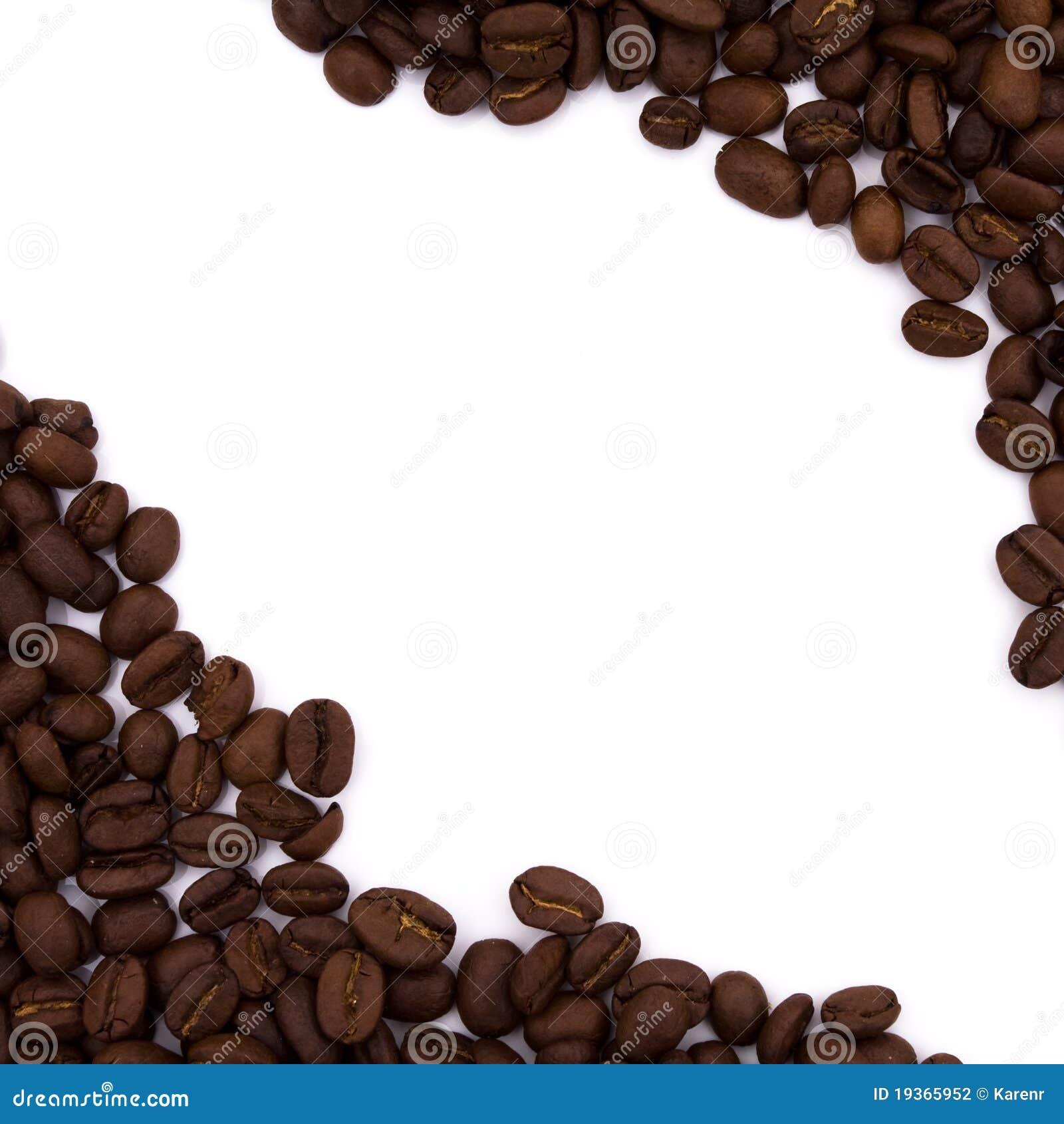 Beira do feijão de café