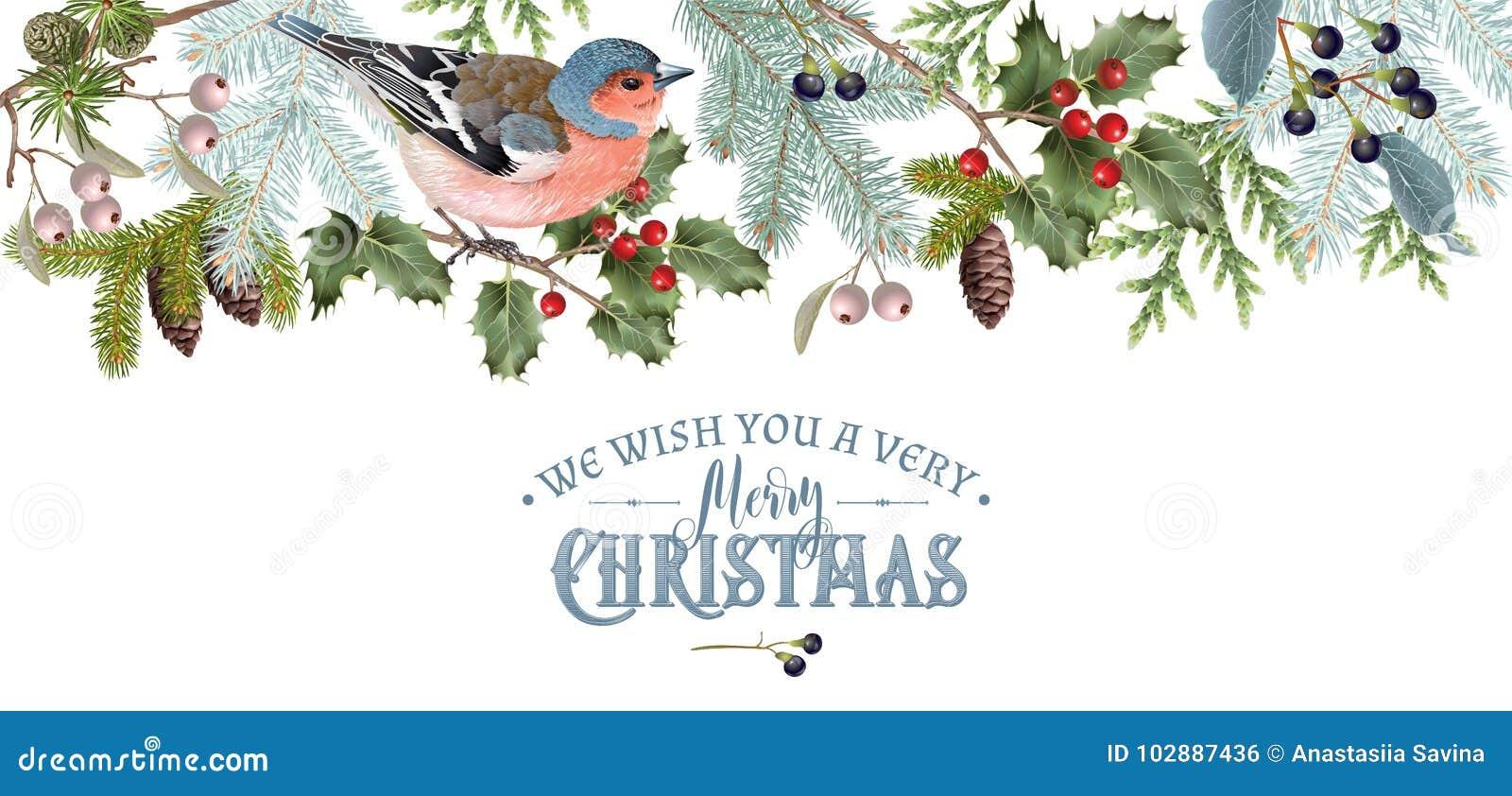 Beira do Natal do pássaro