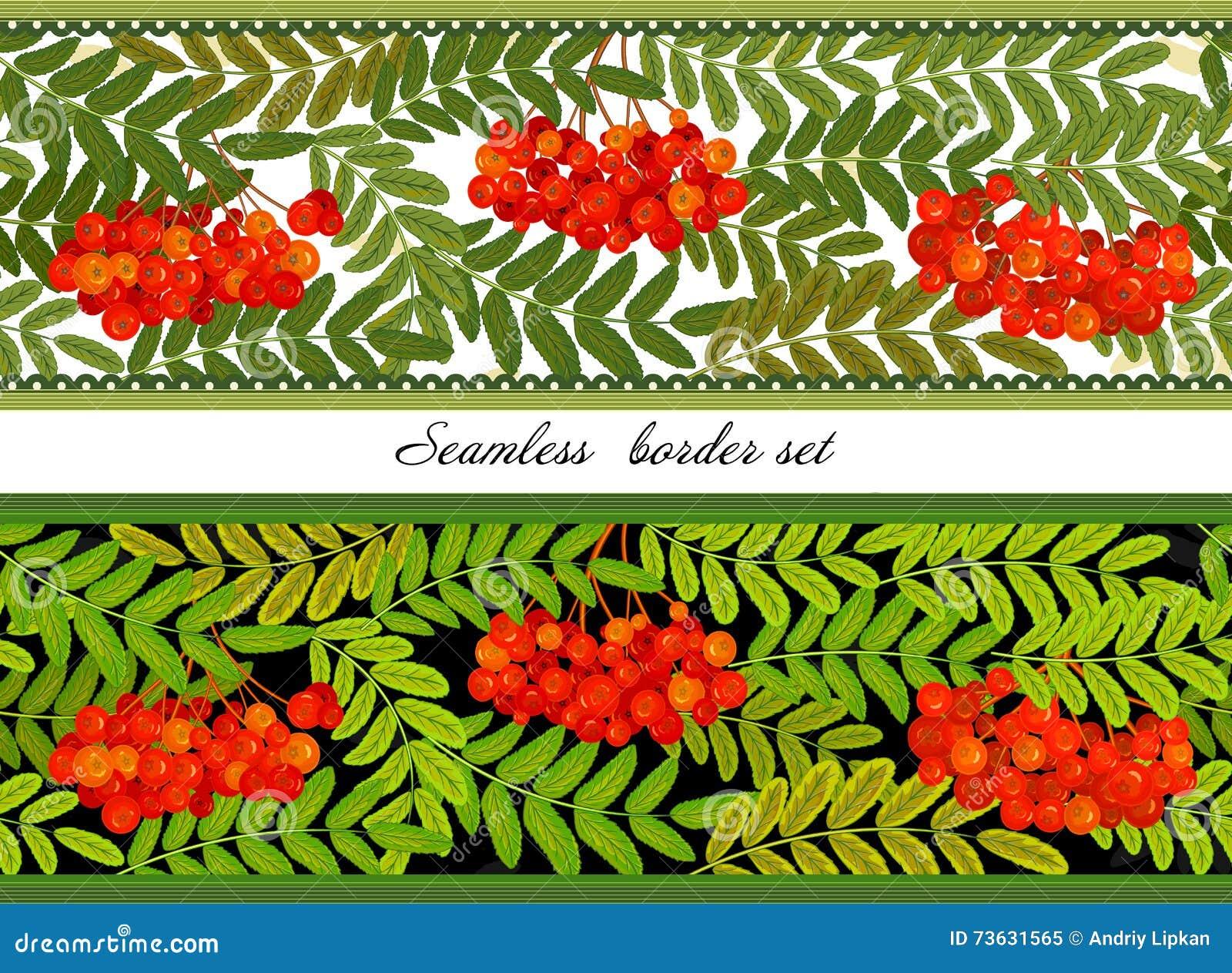 Beira dos grupos Rowan e das folhas Ilustração horizontal sem emenda do vetor