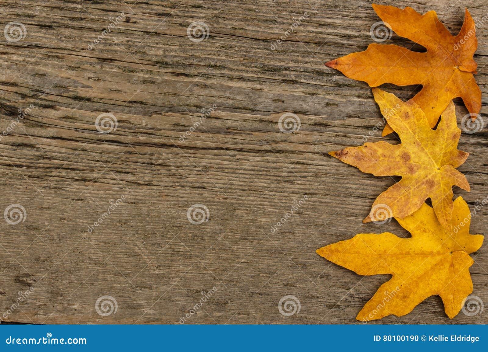 Beira dourada da folha de bordo no fundo de madeira