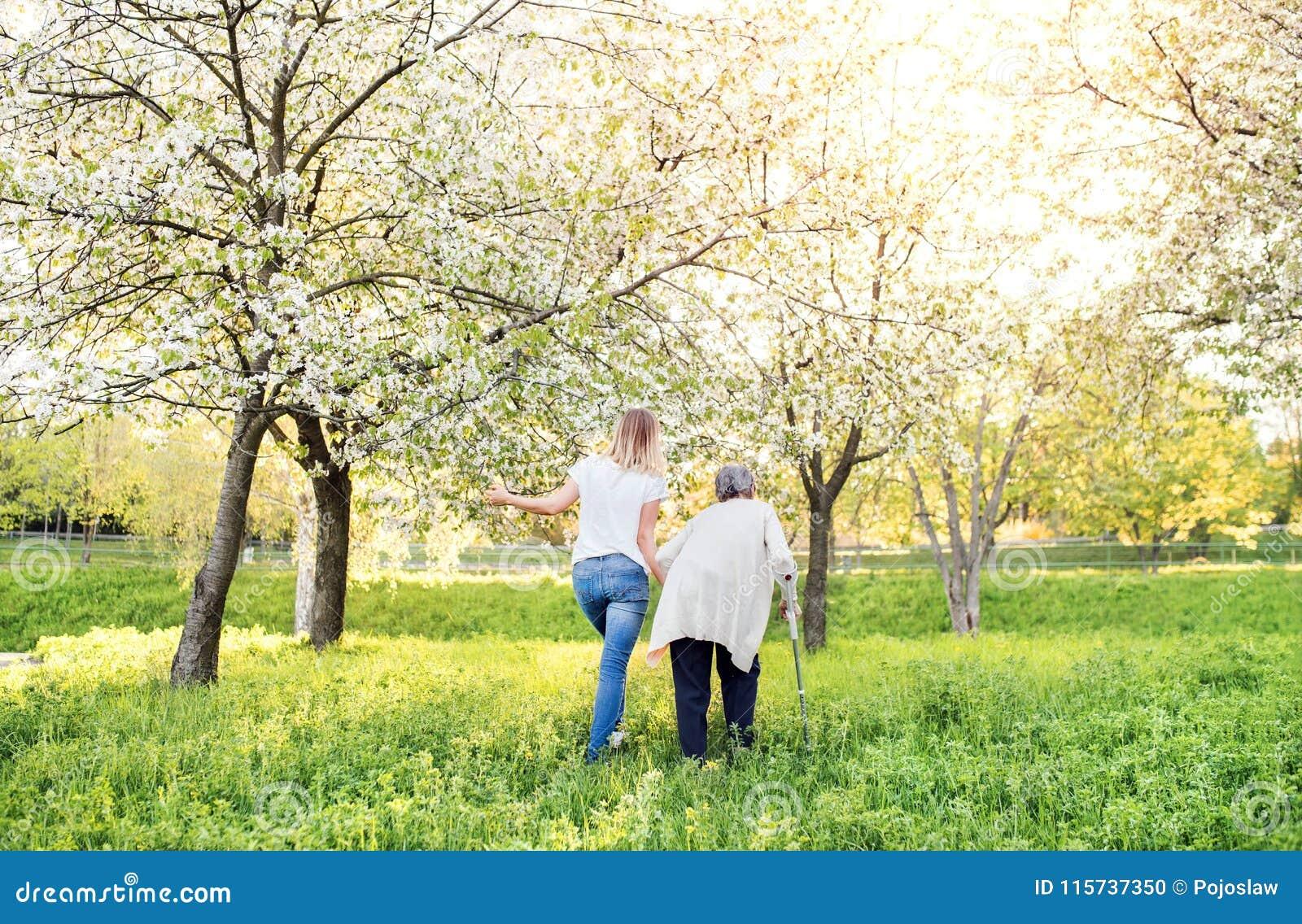 Bejaarde grootmoeder met steunpilaar en kleindochter in de lenteaard