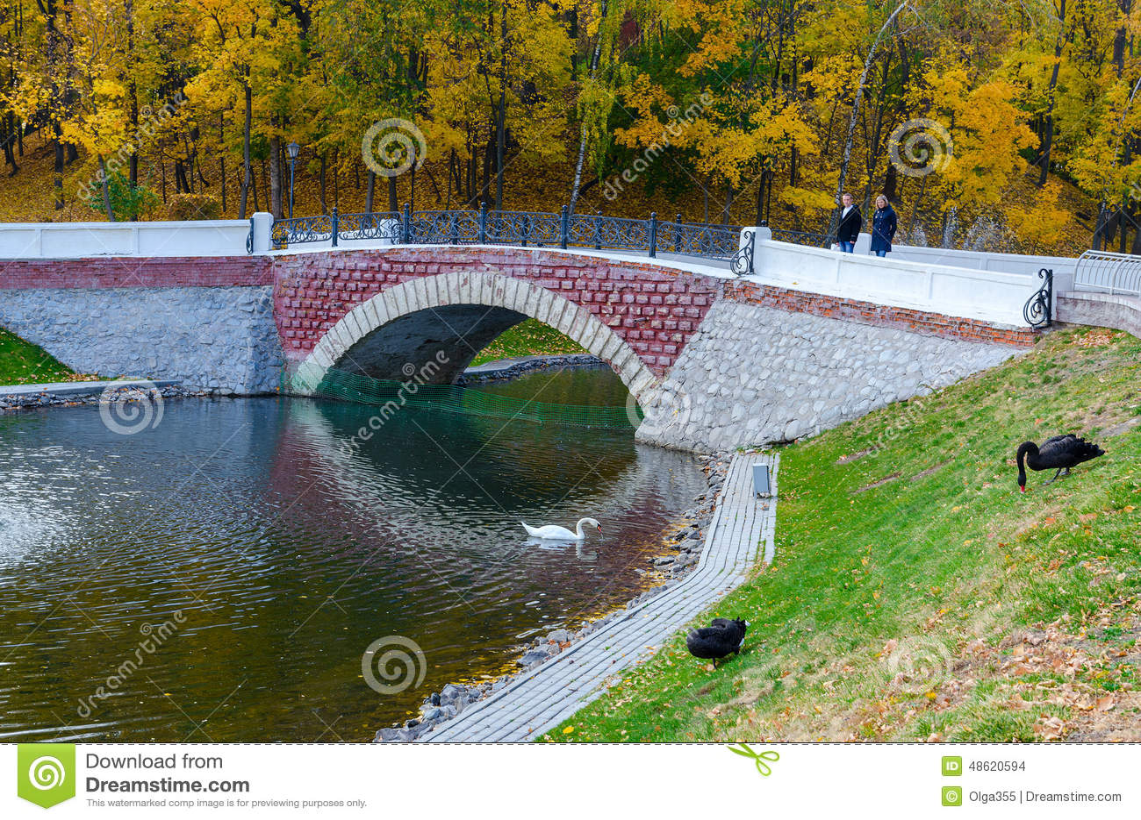 Belarus, Gomel, the Swan Pond in the autumn park