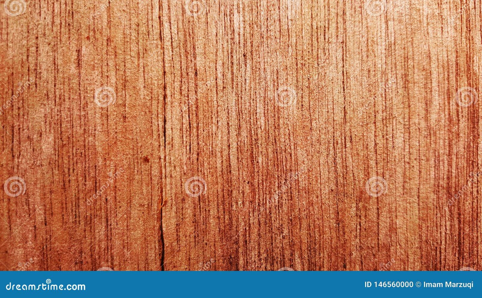 A beleza de um teste padrão de madeira da pena reta
