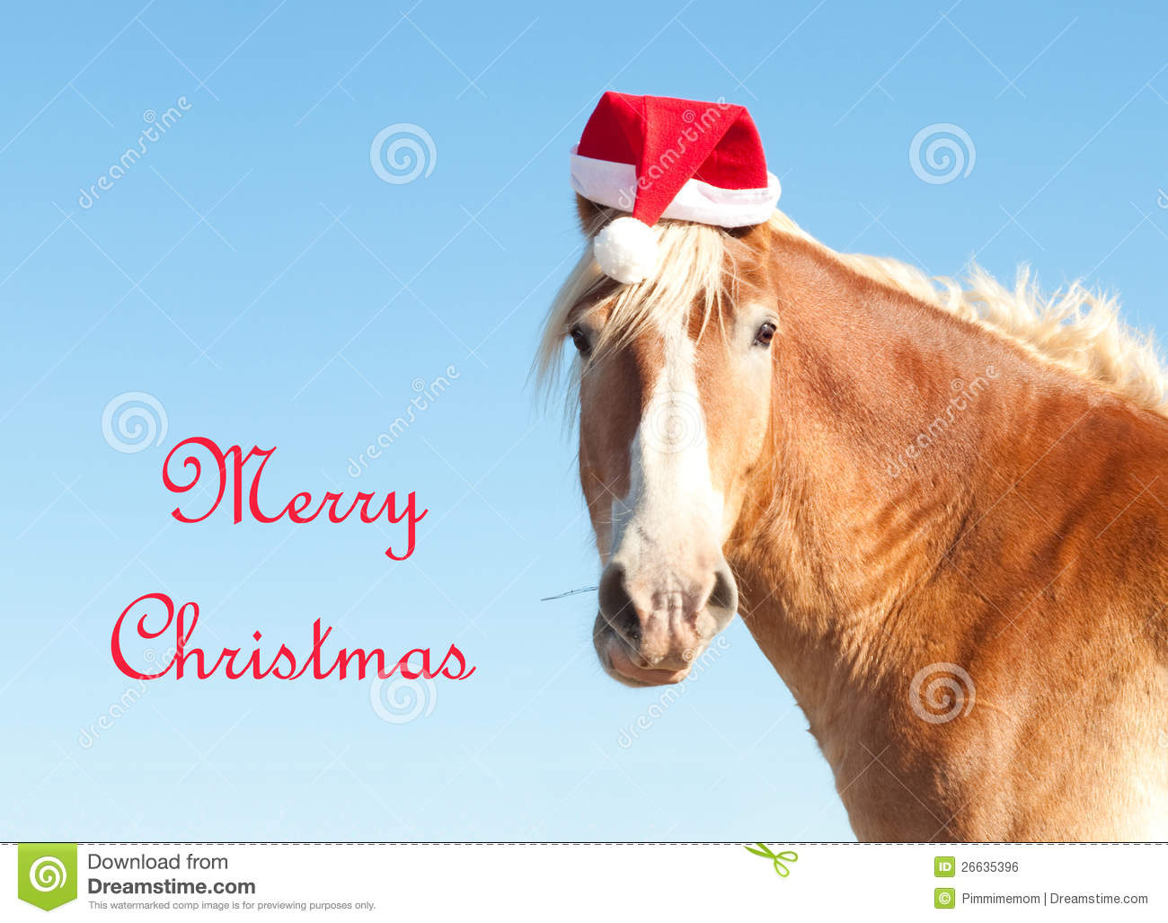 3 454 Merry Christmas Horse Photos Free Royalty Free Stock Photos From Dreamstime