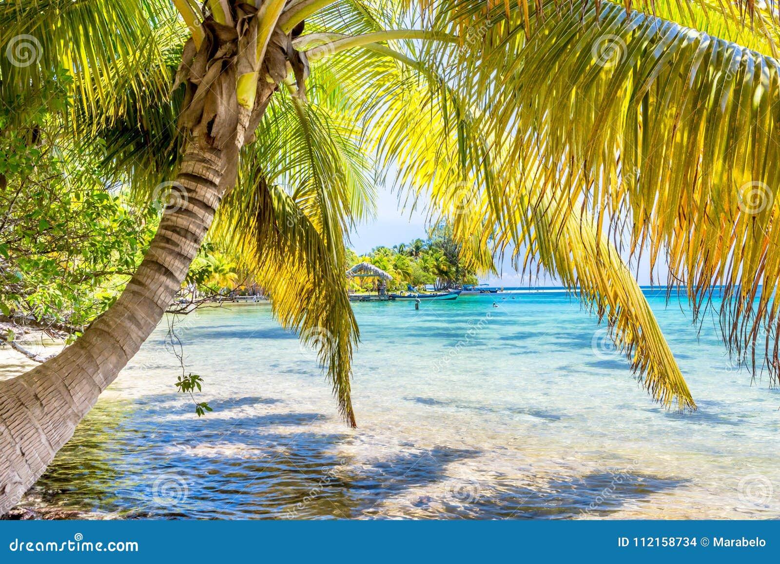 Belize, een tropisch paradijs in Midden-Amerika