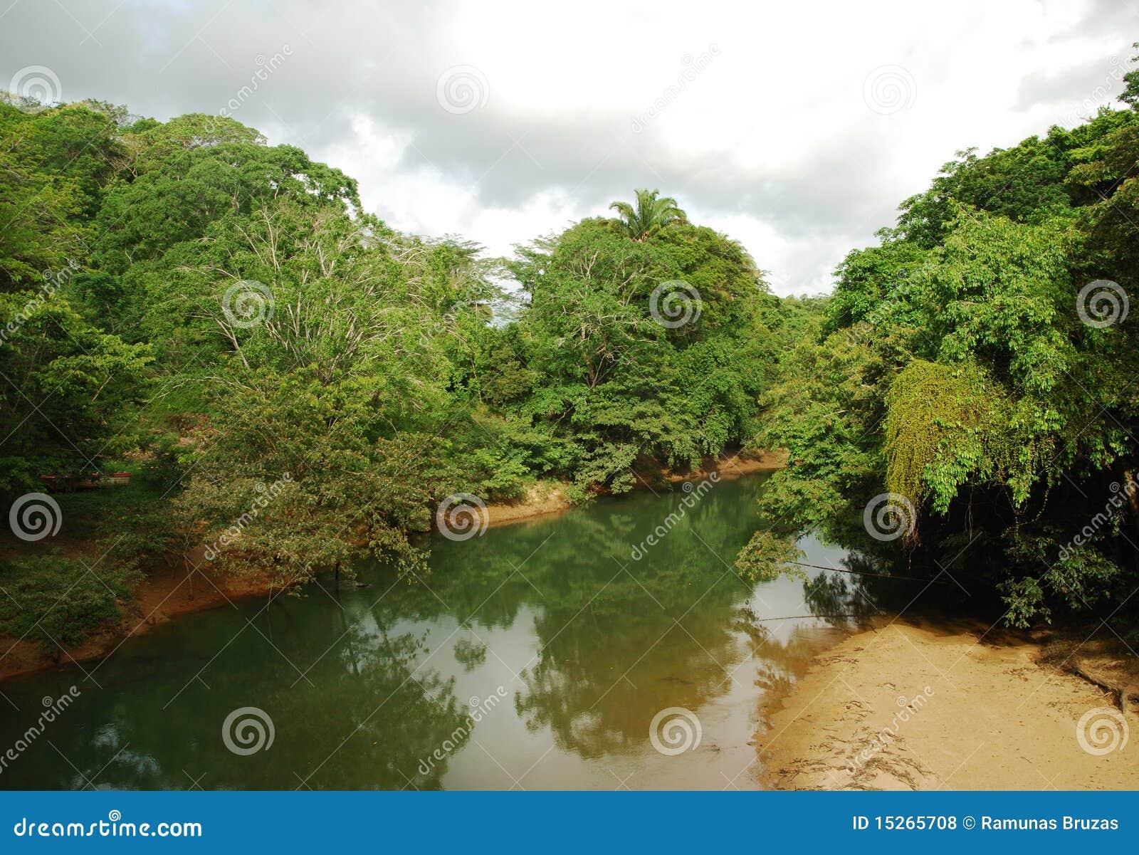 Belize rzeka