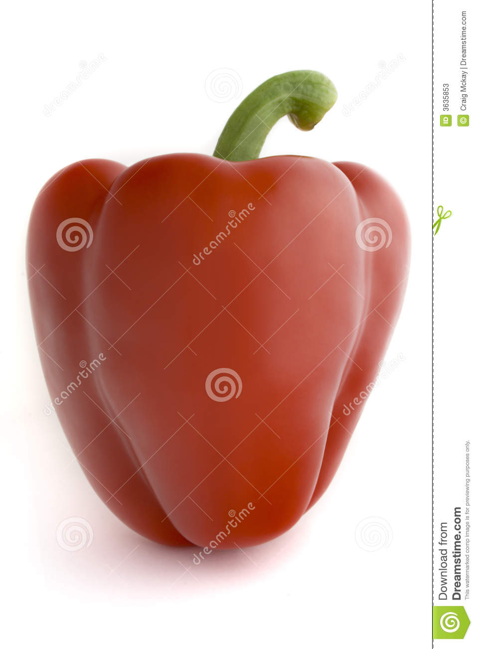 Bell isolated pepper red