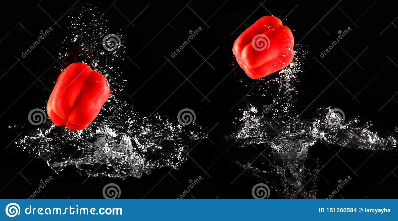Bell Pepper with Water Splash and Bubble Isolated for Vegetable. Fresh Single Red Pepper Drop in Water. Juicy Red Capsicum Paprika