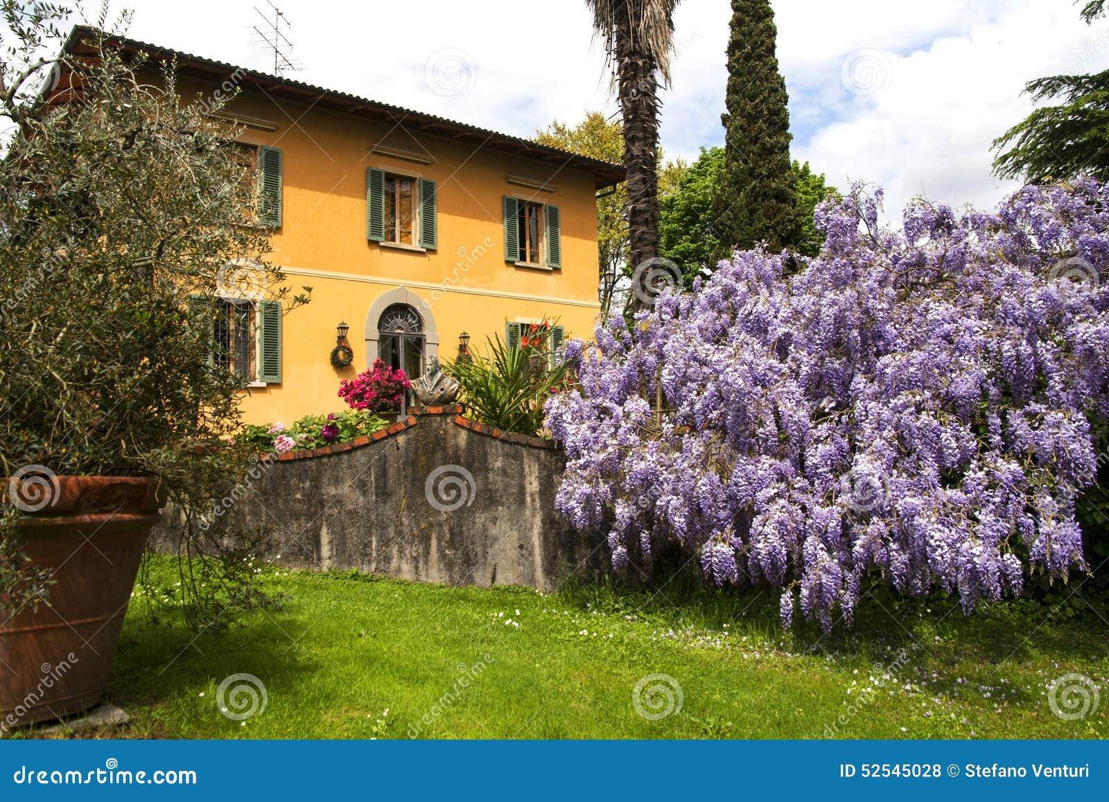 Bella casa di campagna in toscana con la grande pianta for Casa di campagna toscana