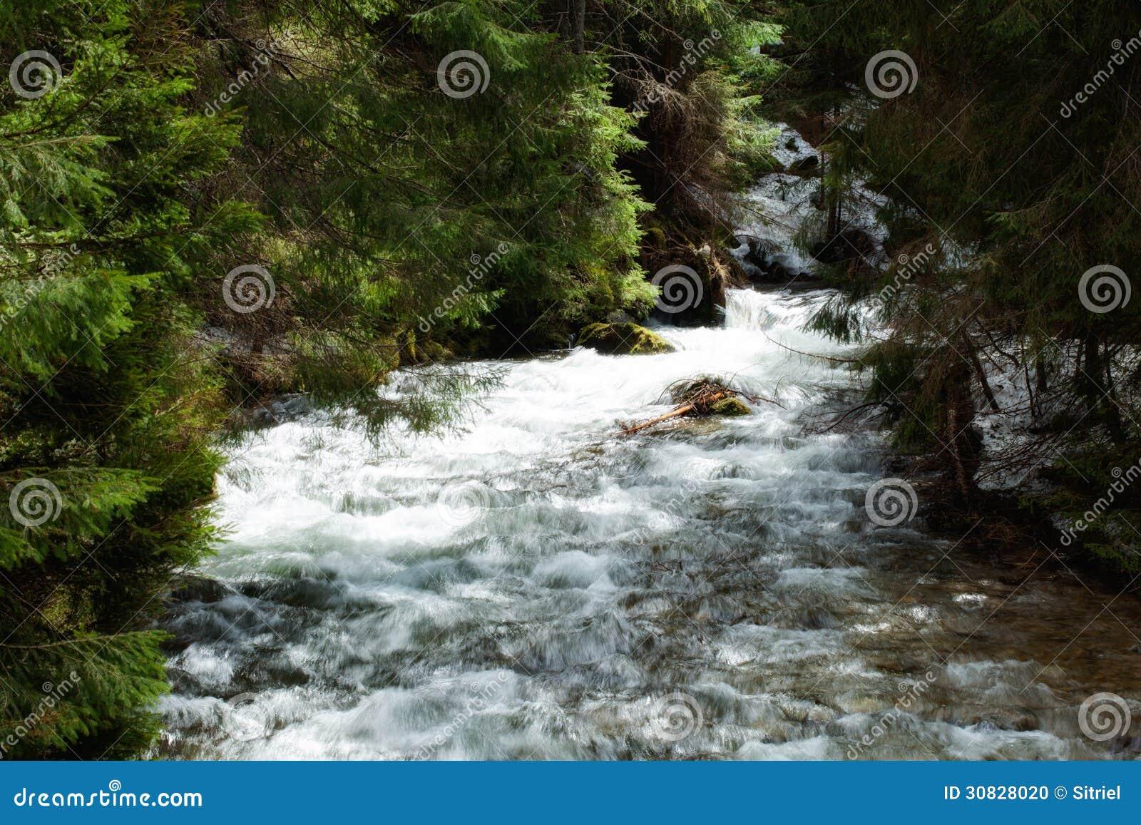 Bella cascata in legno di Tatry