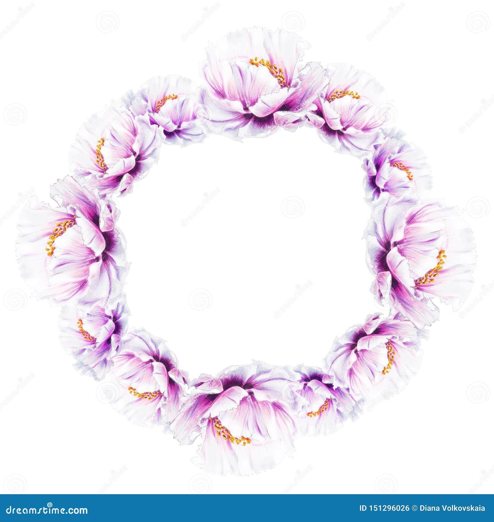 Bella corona bianca della peonia Mazzo dei fiori Stampa floreale Disegno dell indicatore