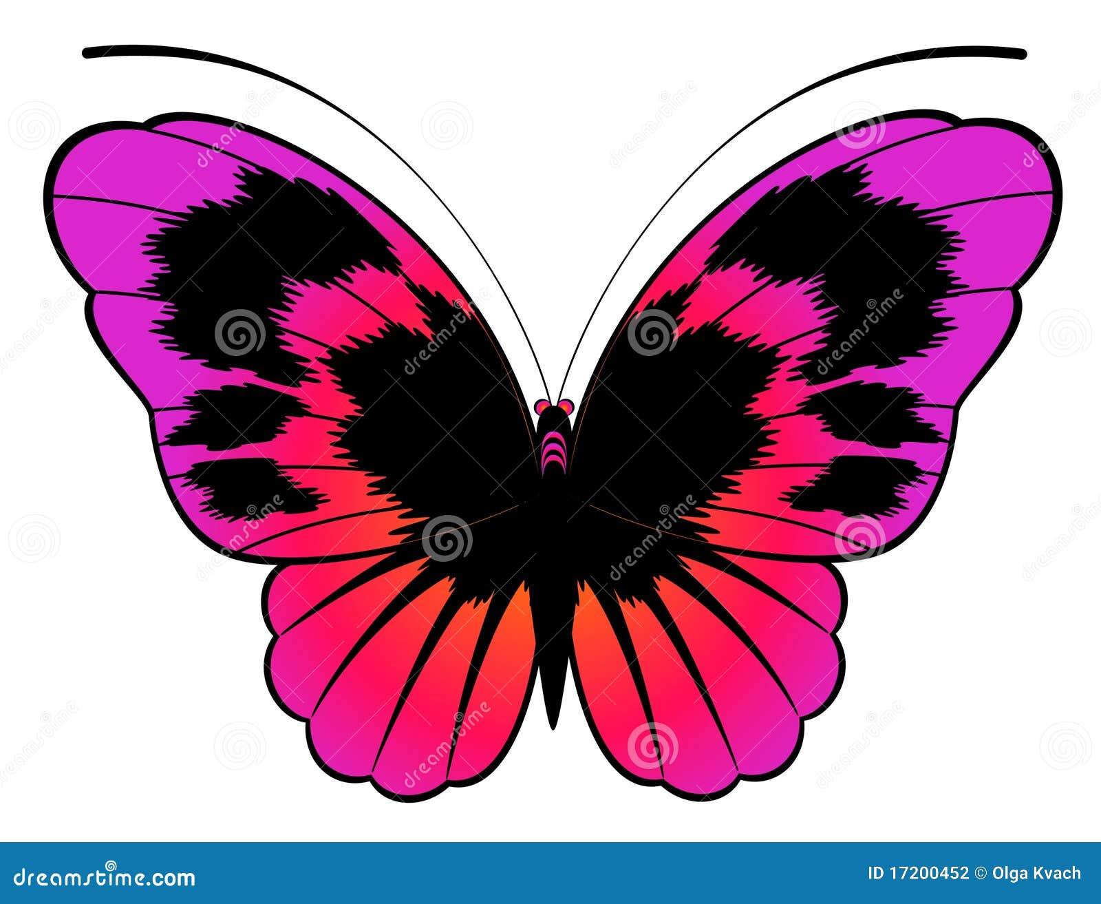 Bella farfalla per un disegno fotografia stock immagine for Immagine di un disegno di architetto