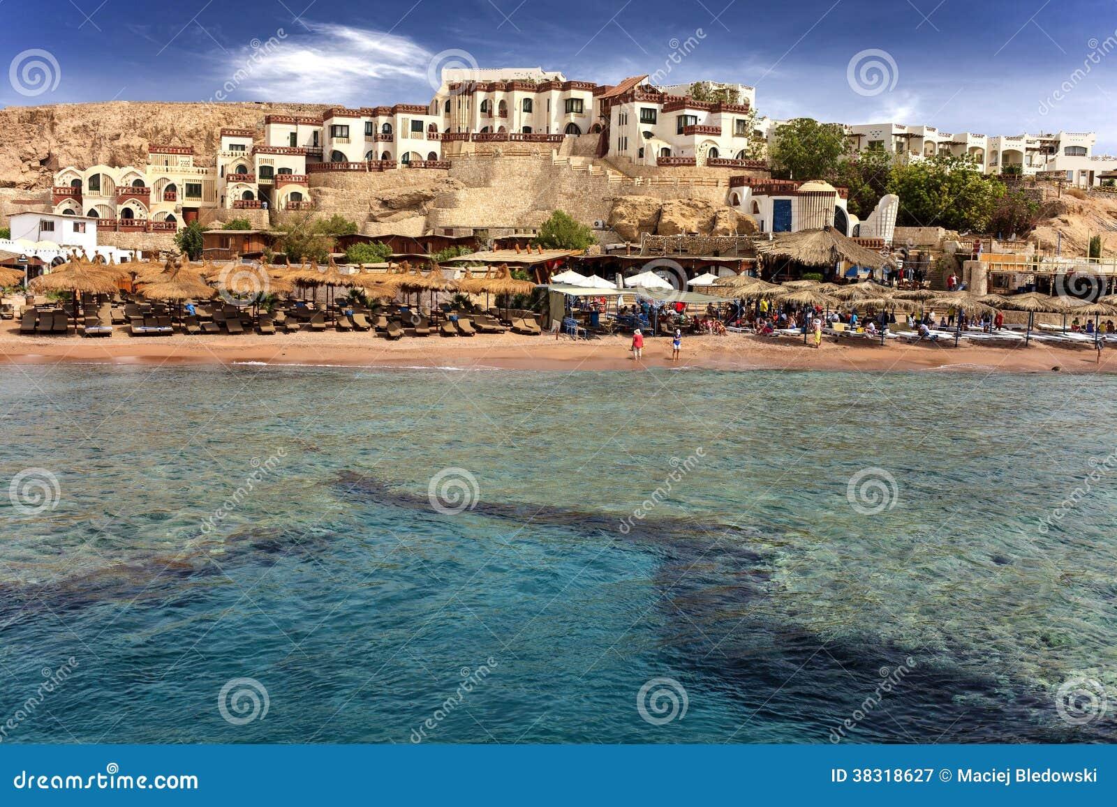 Bella linea costiera nell Egitto.