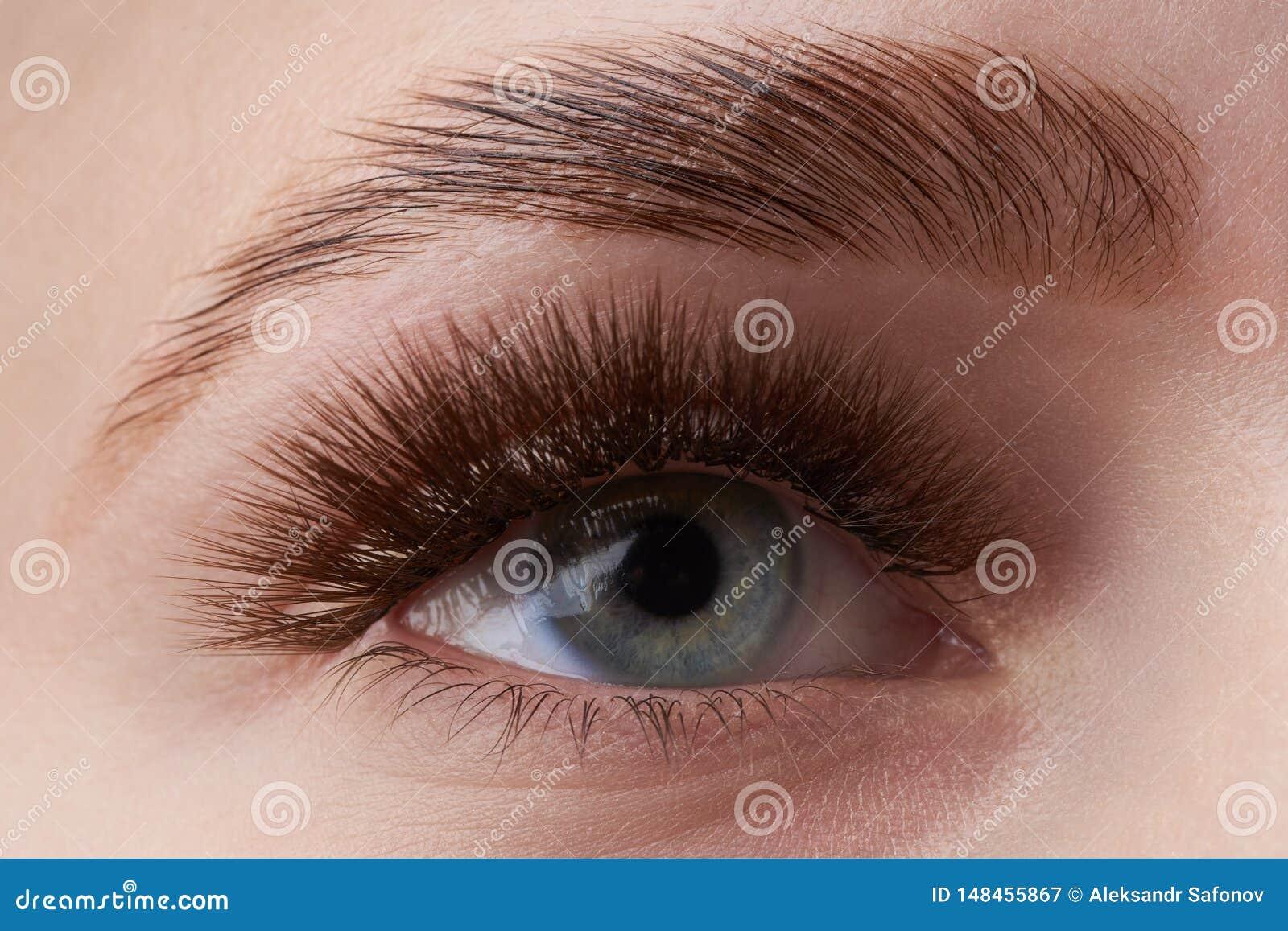 Bella macrofotografia dell occhio di una donna con trucco estremo dei cigli lunghi Cigli lunghi perfetti senza cosmetici