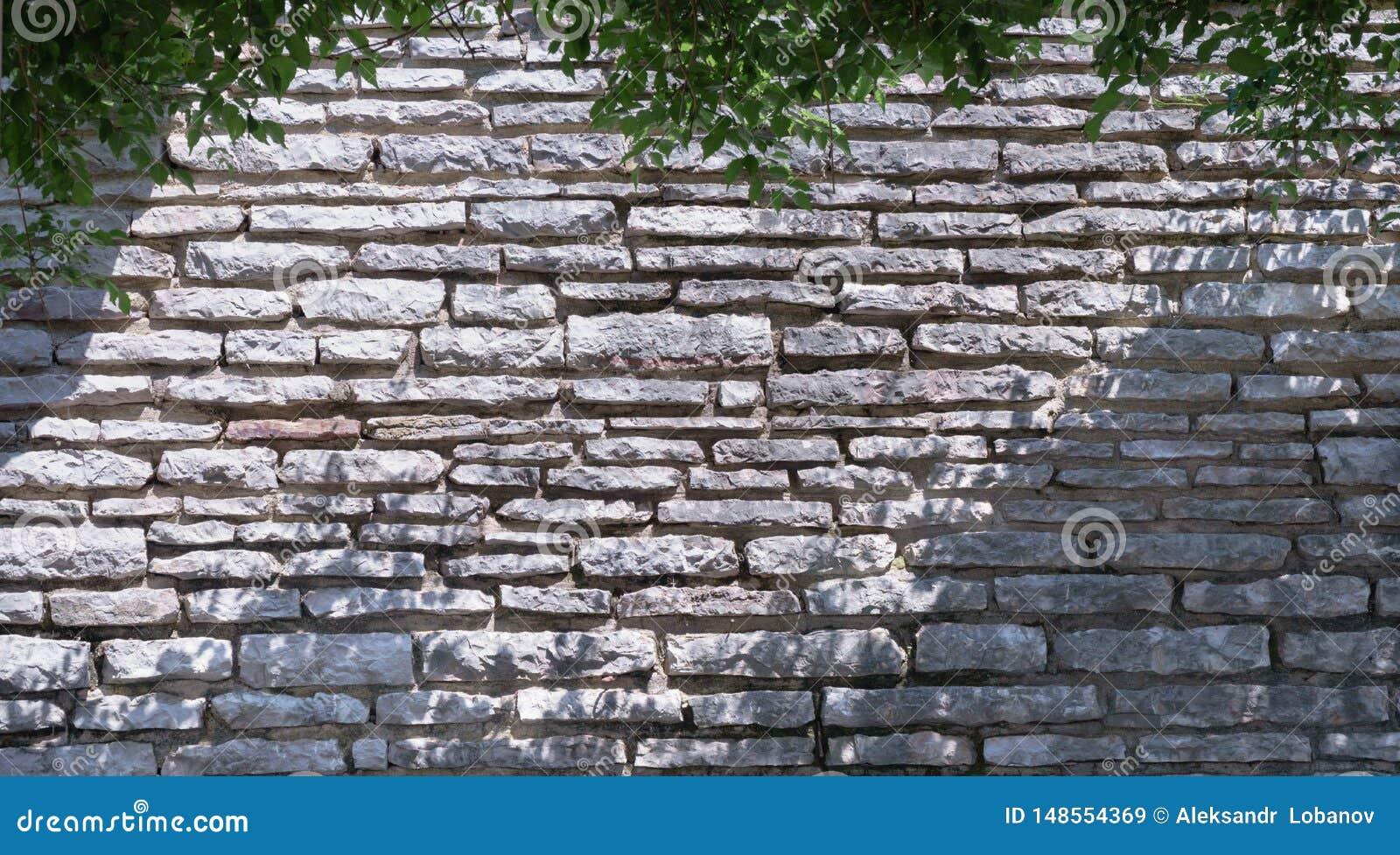 Bella parete della pietra grigia