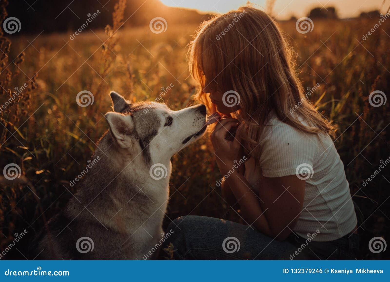 Bella ragazza elegante con il cane, tramonto Fondo del campo