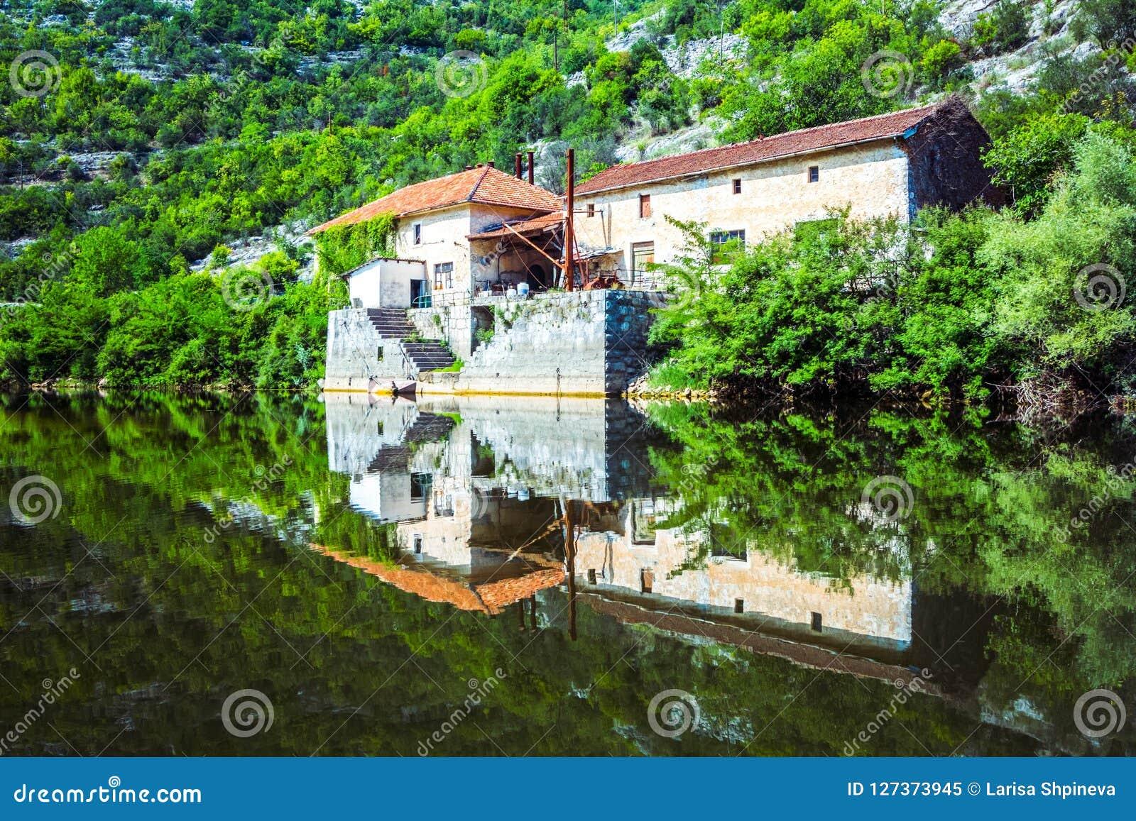 Bella riflessione della casa, della foresta, dei cespugli verdi e delle rocce nel lago Skadar, penisola di Balcani, Montenegro de