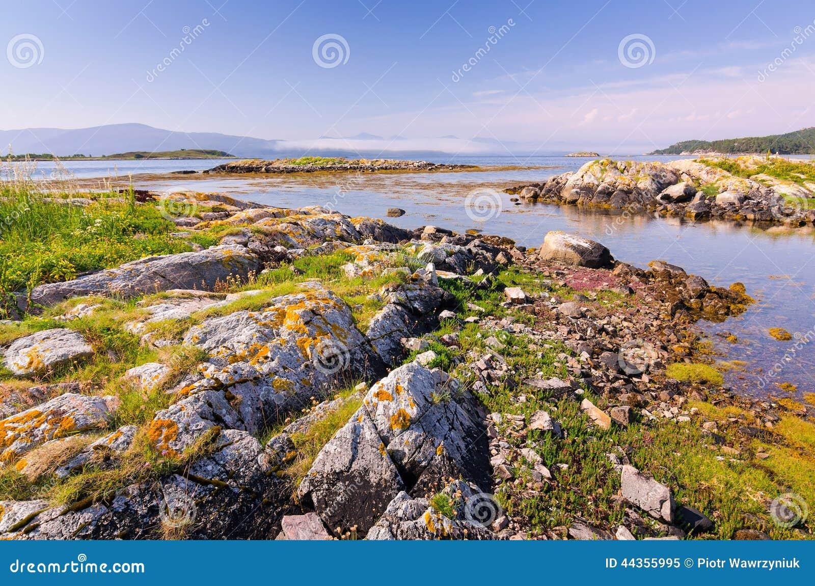 Bella riva norvegese del fiordo