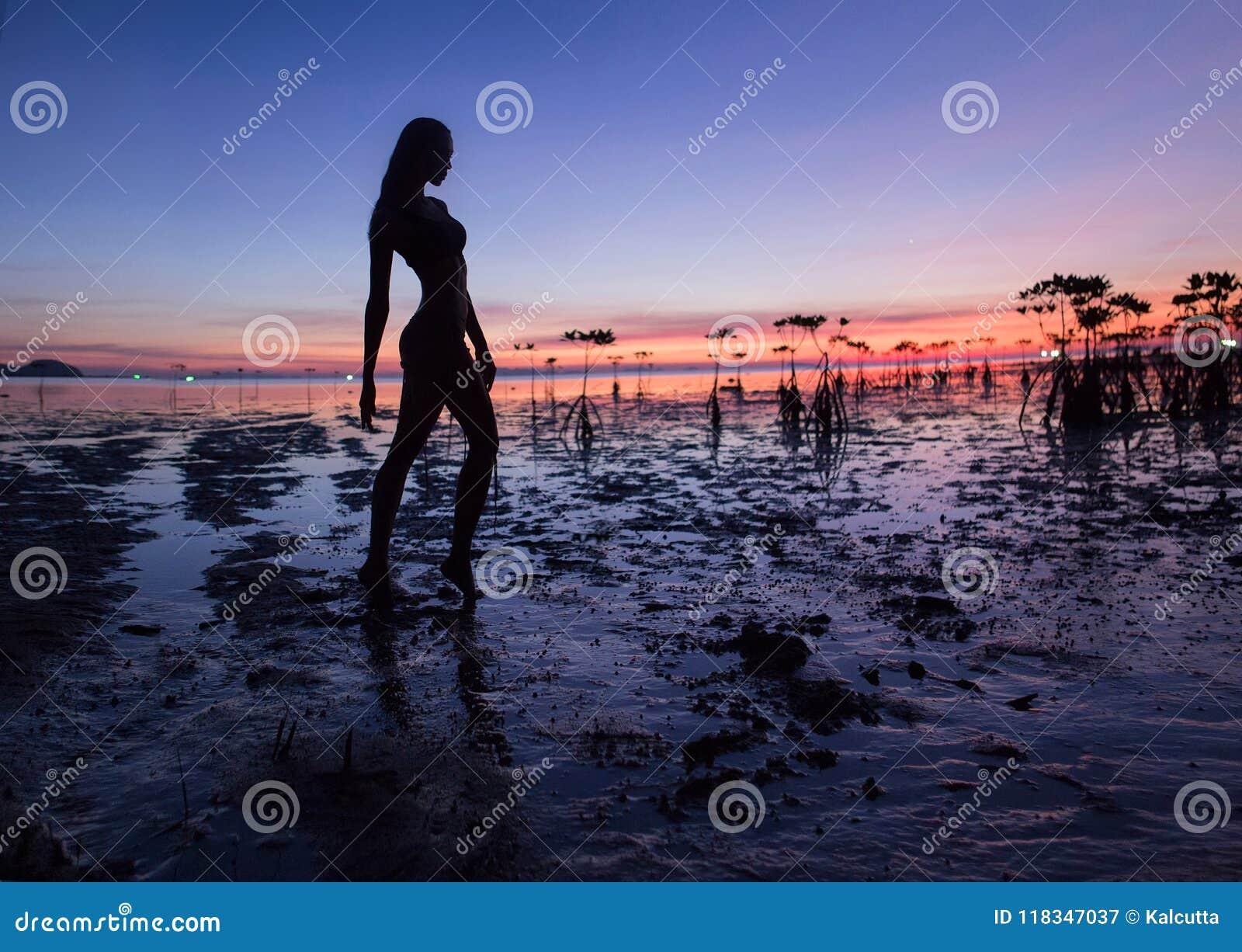 Bella siluetta sexy della donna che posa vicino al mare Tramonto della spiaggia