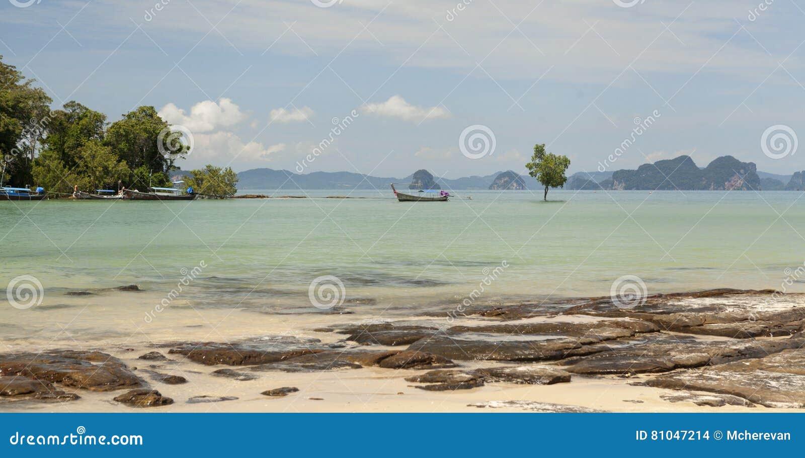 Bella spiaggia con le viste del mare e un peschereccio tailandese tradizionale Bella spiaggia con gli alberi tropicali con un ond