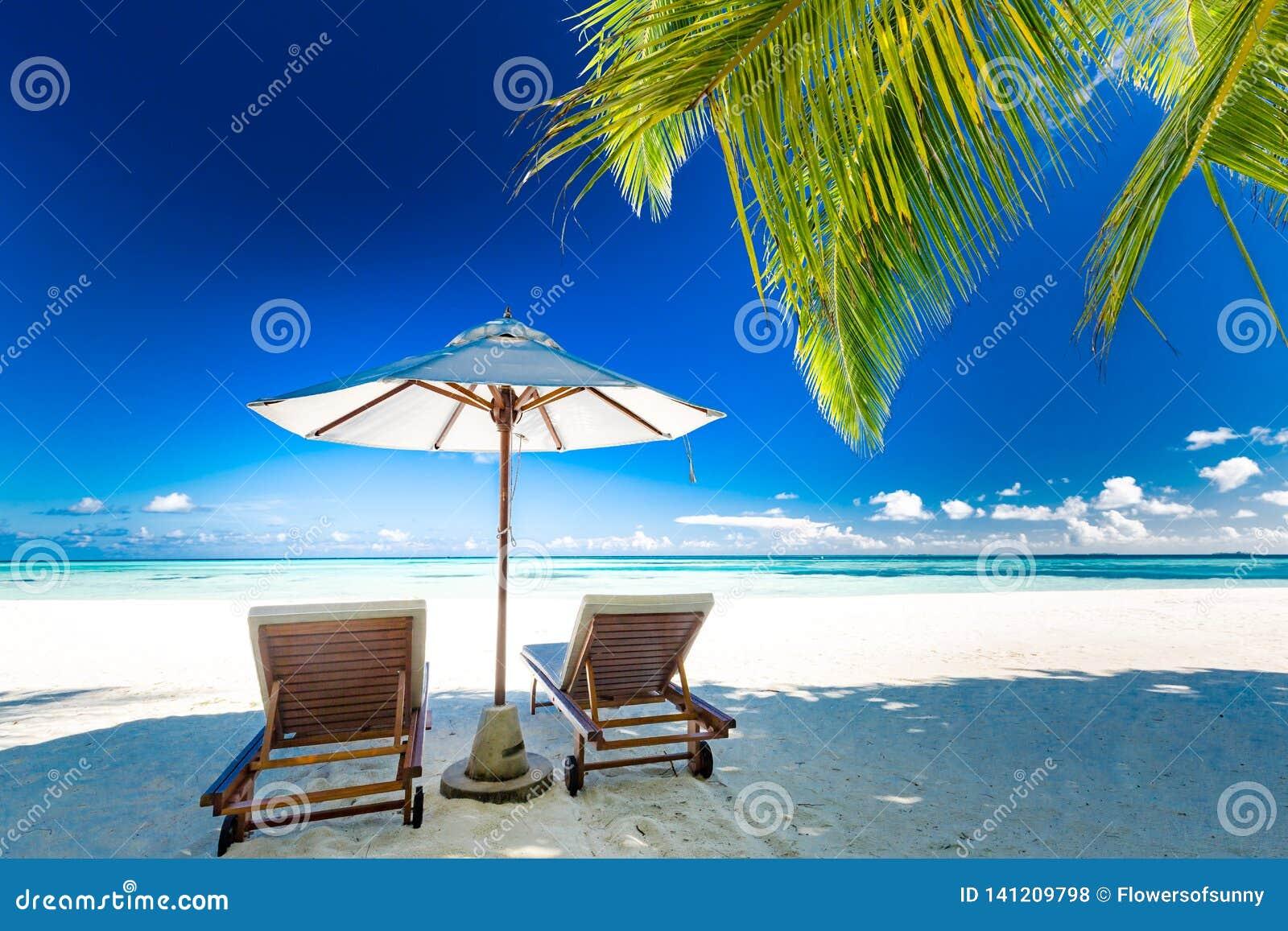 Bella spiaggia Fondo di concetto di vacanza estiva e di vacanza Architettura del pæsaggio tropicale ispiratrice Scena di viaggio