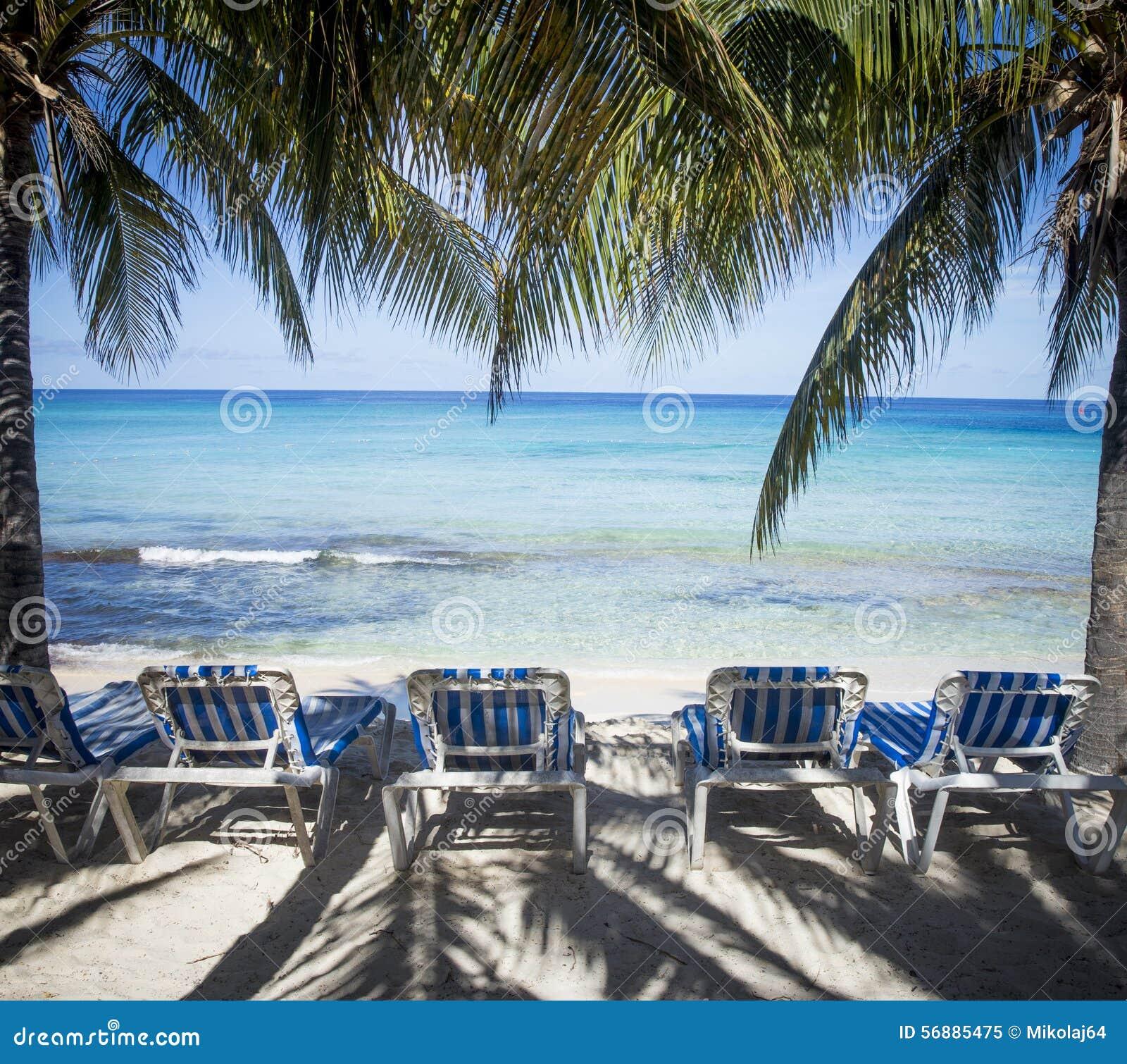 Bella spiaggia sabbiosa caraibica