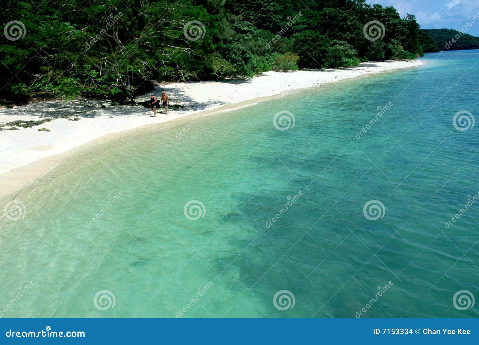 Bella spiaggia tropicale fotografia stock immagine di for Disegni di casa sulla spiaggia tropicale