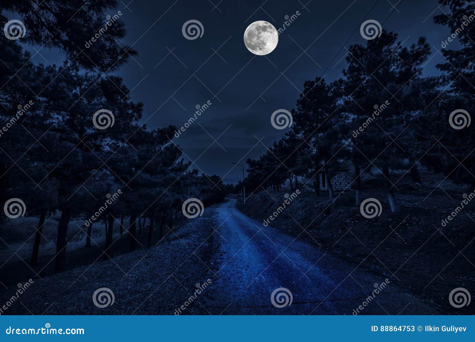 Bella via del villaggio del paesaggio con le costruzioni e gli alberi e grande luna piena al cielo notturno Grande Caucaso Natura