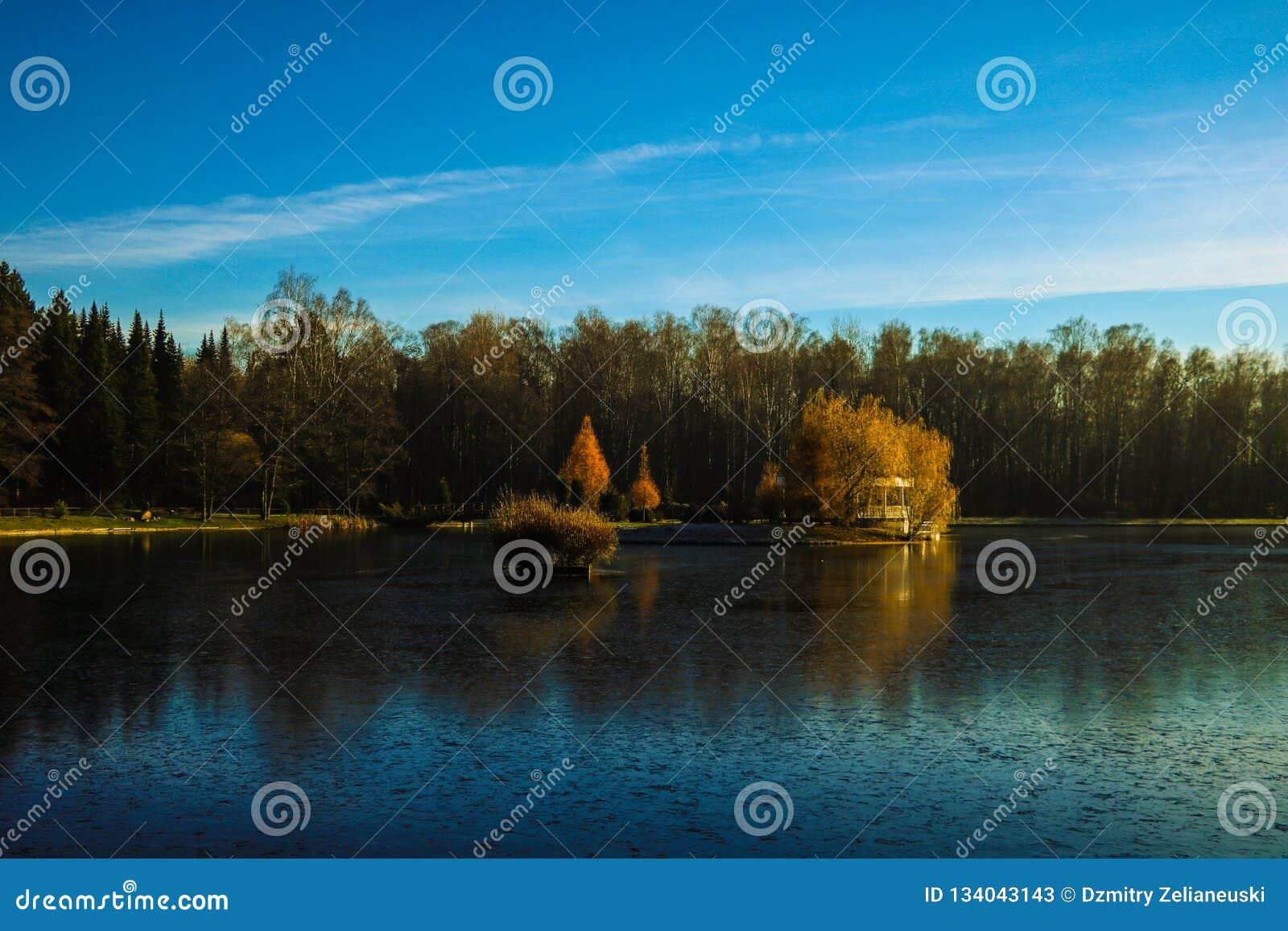 Bella vista del lago e della foresta, riflessa nell acqua, contro il cielo blu