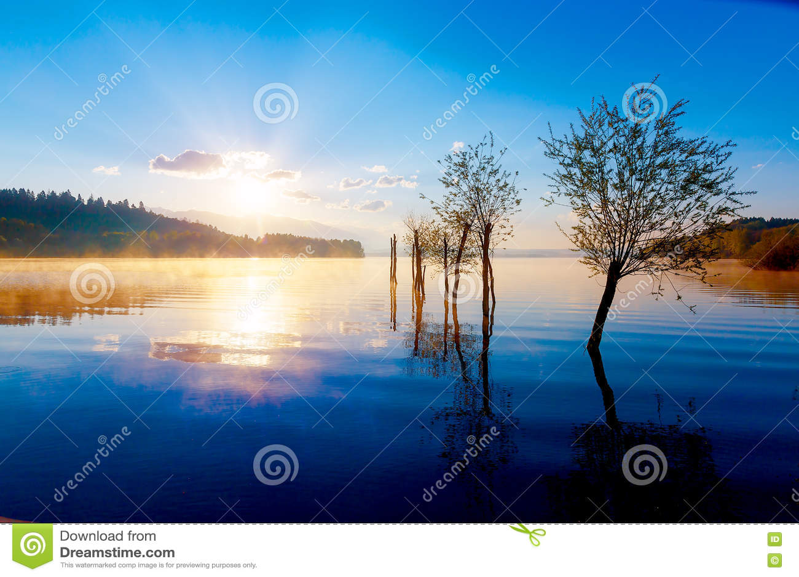Bella vista del lago in nebbia di mattina con le montagne for Aprire le planimetrie con una vista