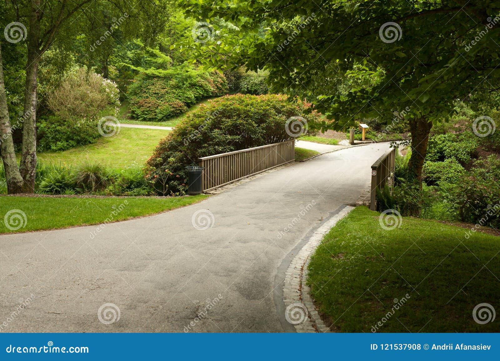 belle allée en parc conception de aménagement de jardin photo stock